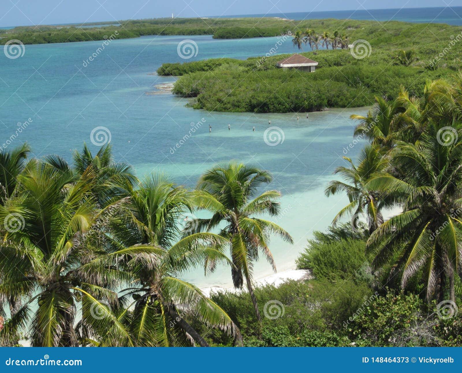 Paisaje hermoso de una isla del Caribe del paraíso