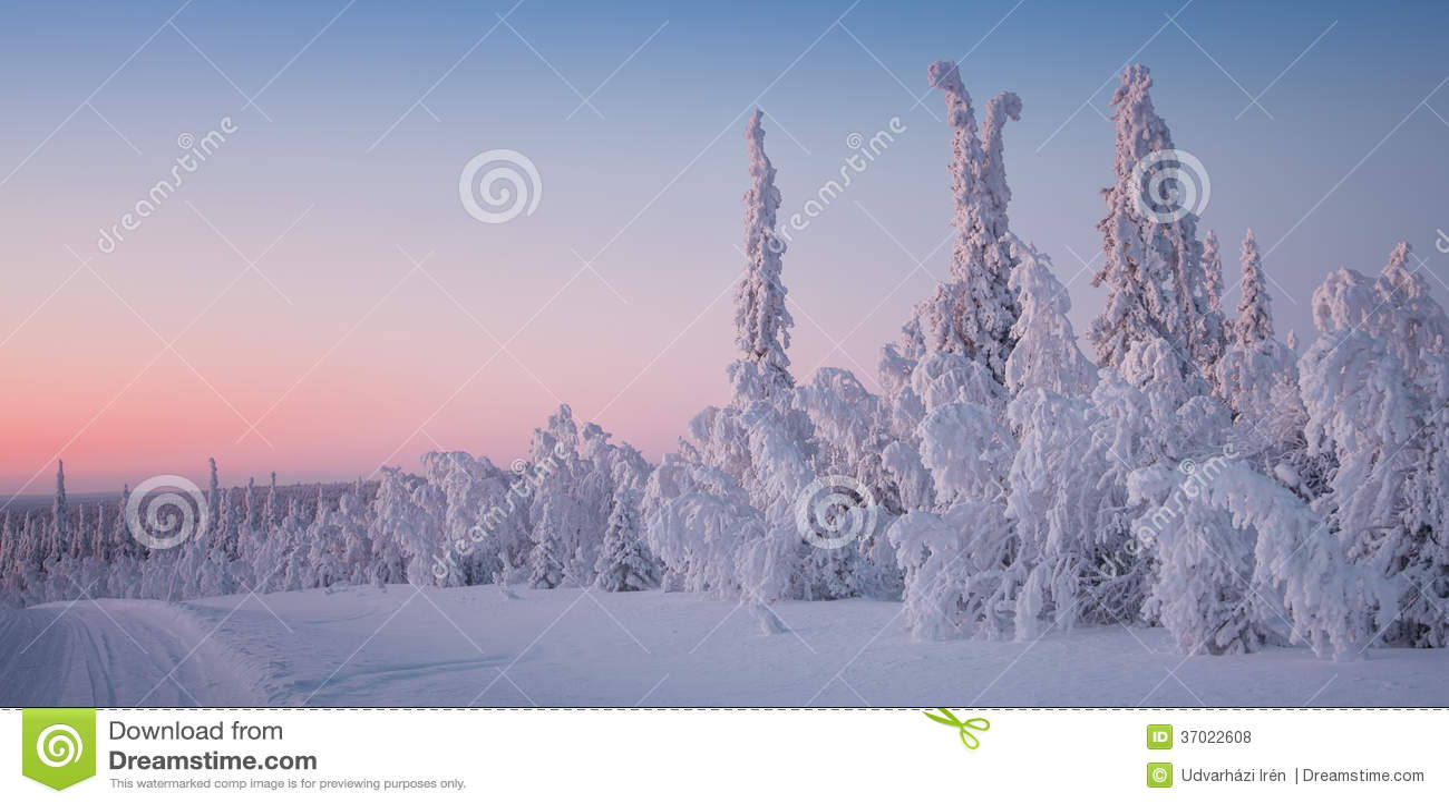 Paisaje hermoso del invierno en Laponia Finlandia