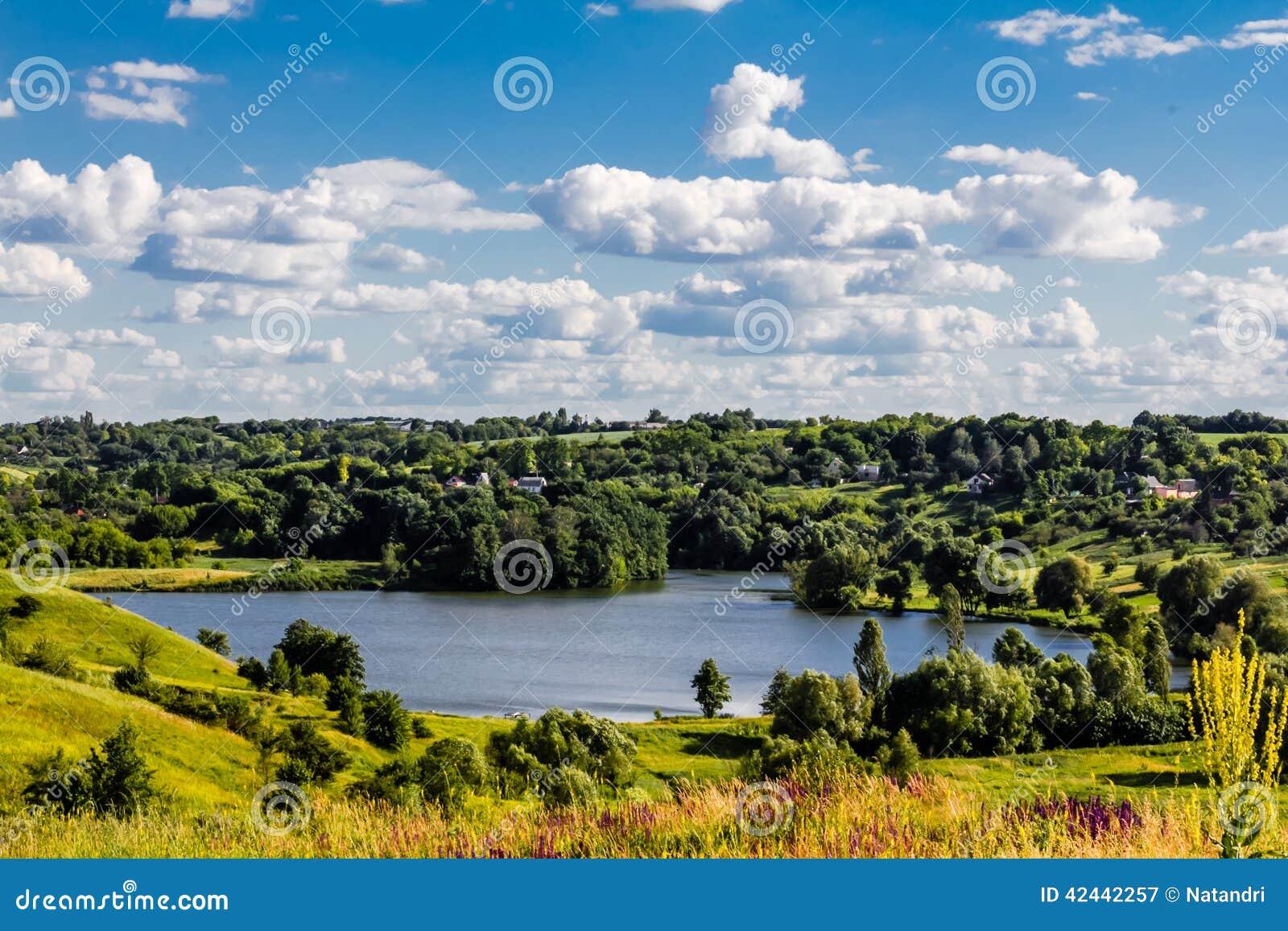 Paisaje hermoso del lago en campo ucraniano Backgr del verano