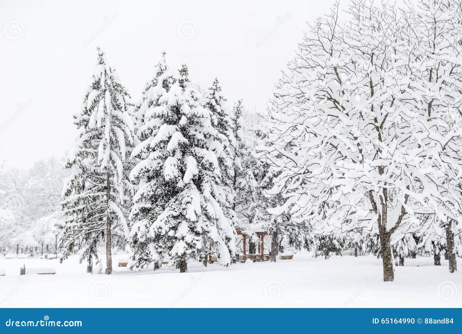 Paisaje hermoso del parque del invierno de Sofía, Bulgaria