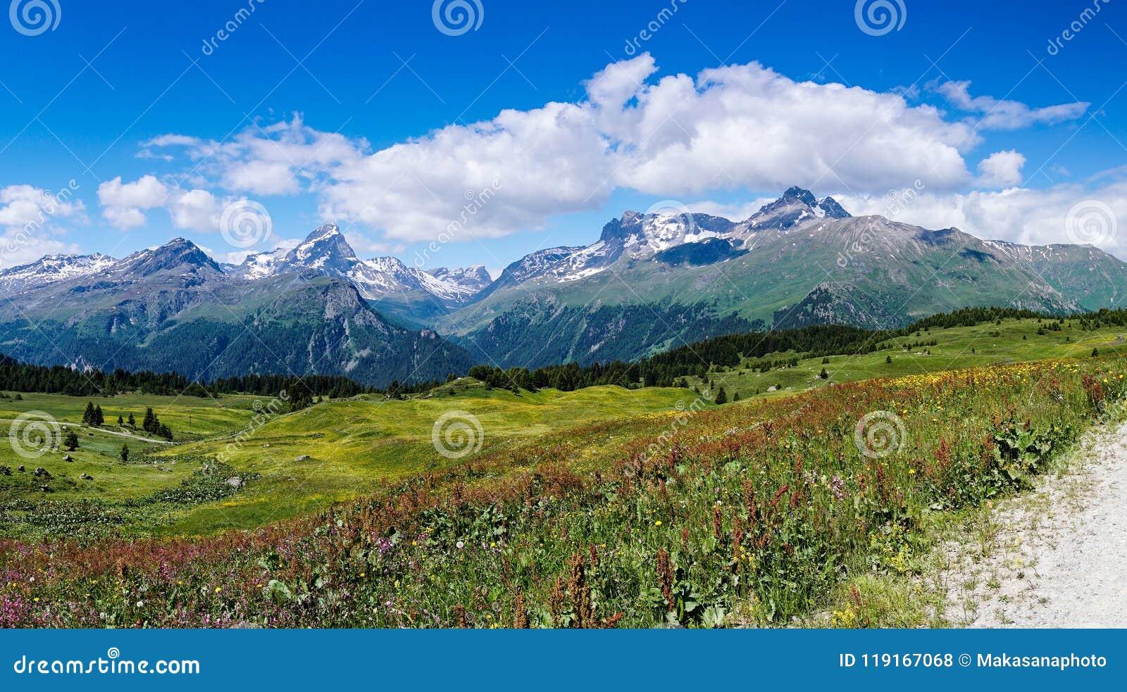 Paisaje idílico de la montaña en el verano con un camino de la grava a la derecha el lado de la extrema derecha