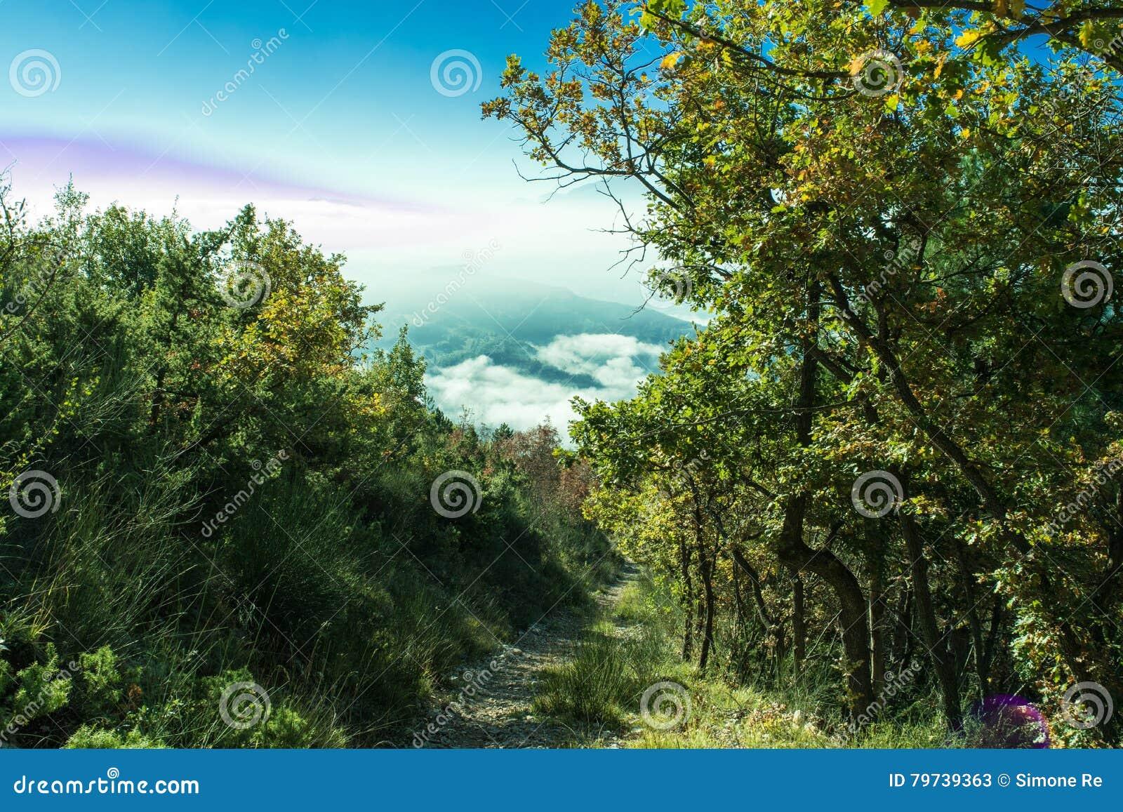 Paisaje maravilloso de Furlo, Marche Italia