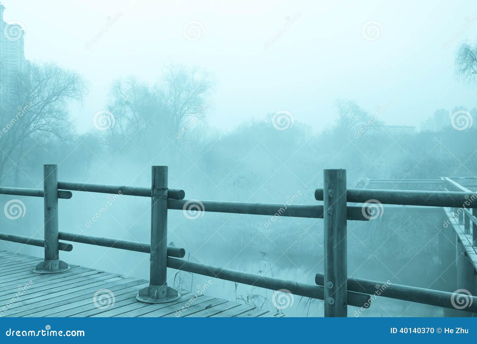 Paisaje misterioso de la niebla