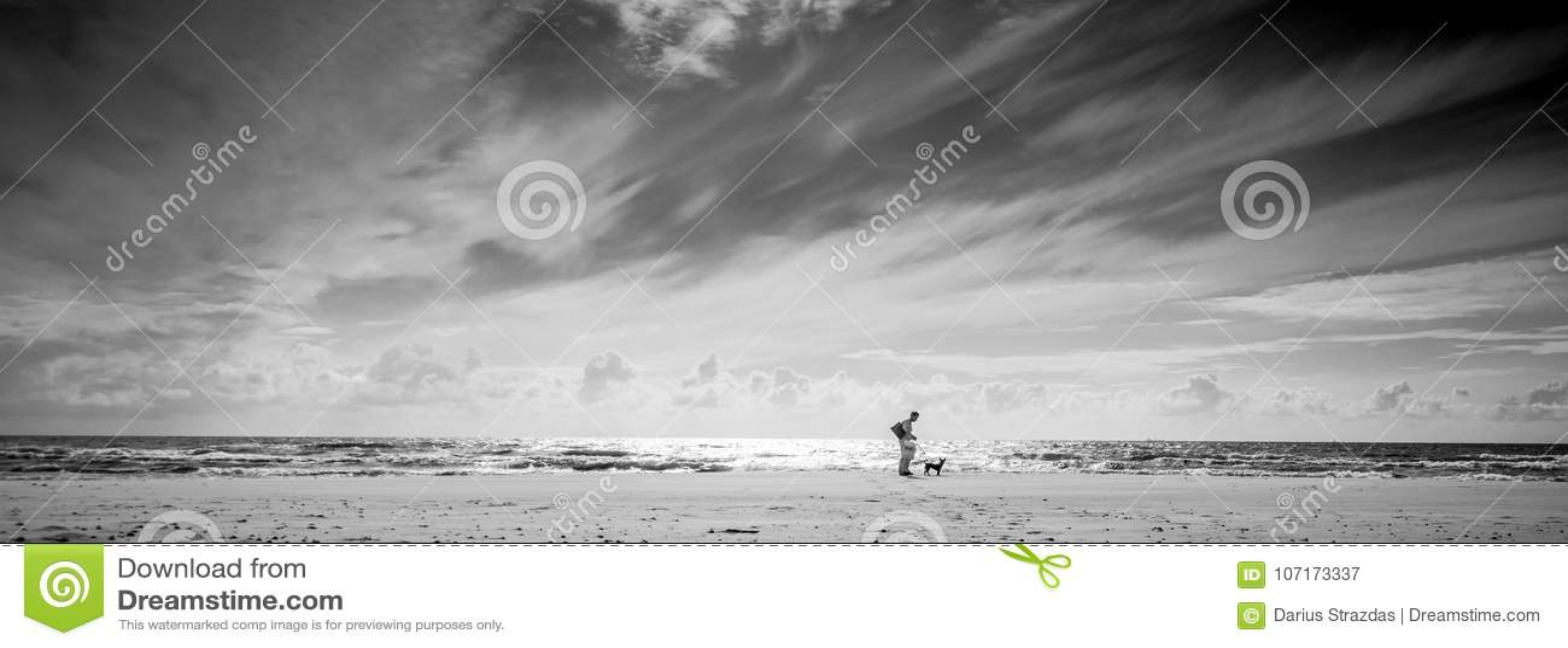 Paisaje monocromático de la orilla de mar