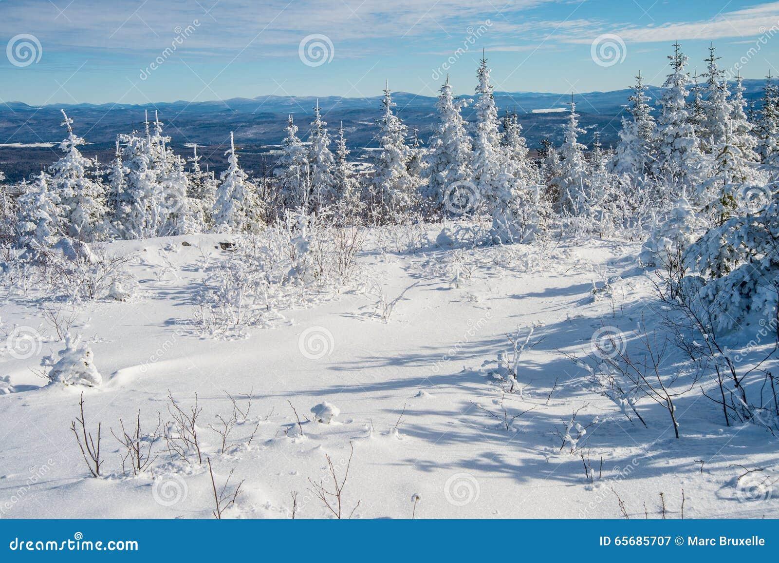 Paisaje nevoso hermoso en Quebec, Canadá
