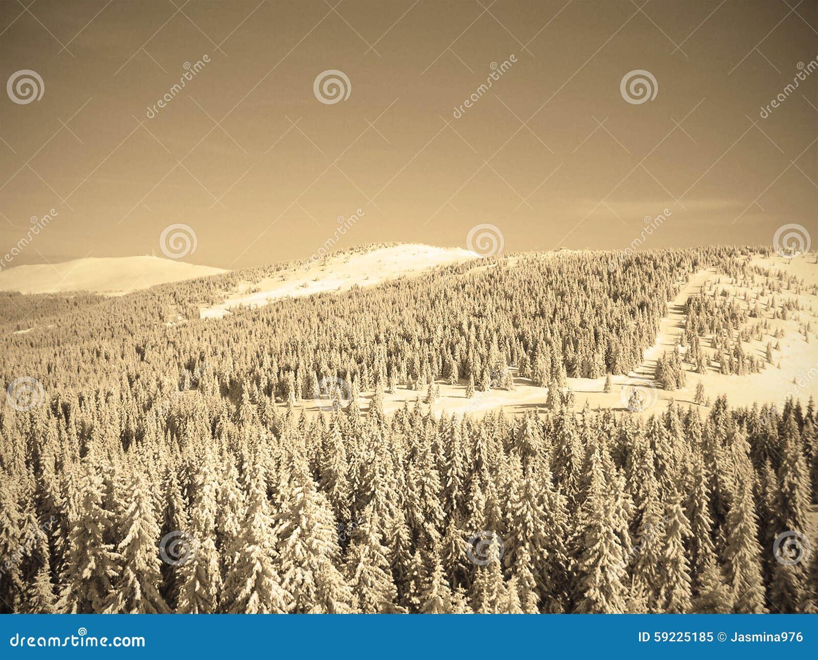 Download Paisaje Nevoso Hermoso En Una Estación De Esquí De La Montaña, Estilo Retro Del Invierno De La Sepia Imagen de archivo - Imagen de tarde, helada: 59225185