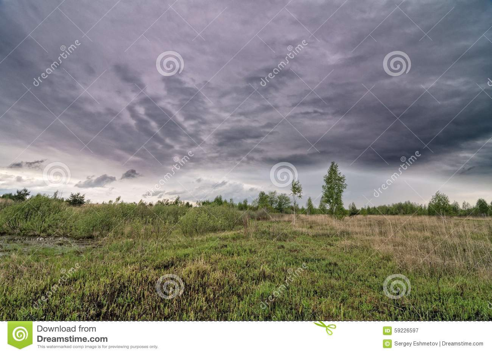 Download Paisaje rural imagen de archivo. Imagen de nublado, cosechas - 59226597