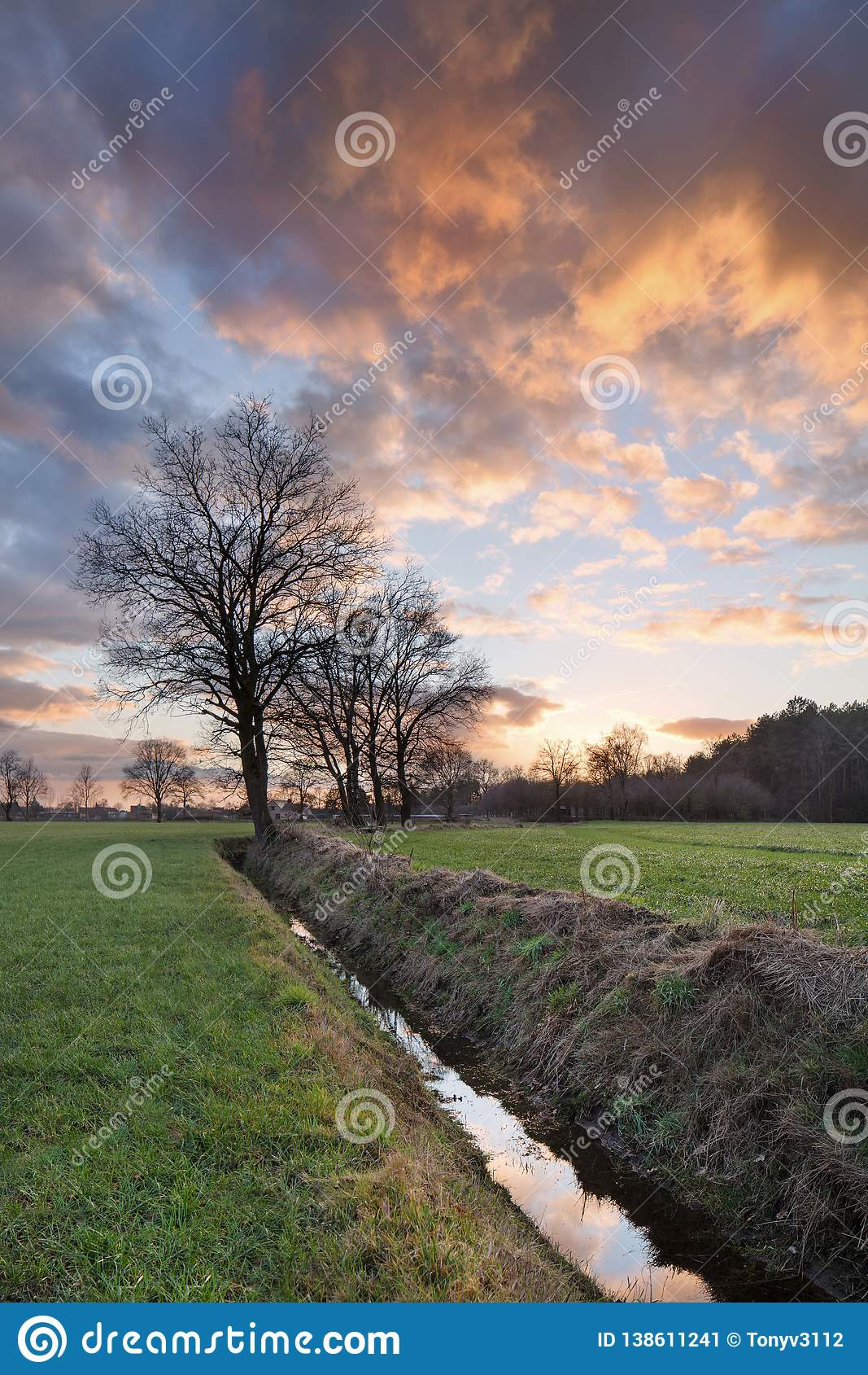Paisaje rural, campo con los árboles cerca de una zanja y puesta del sol colorida con las nubes dramáticas, Weelde, Bélgica
