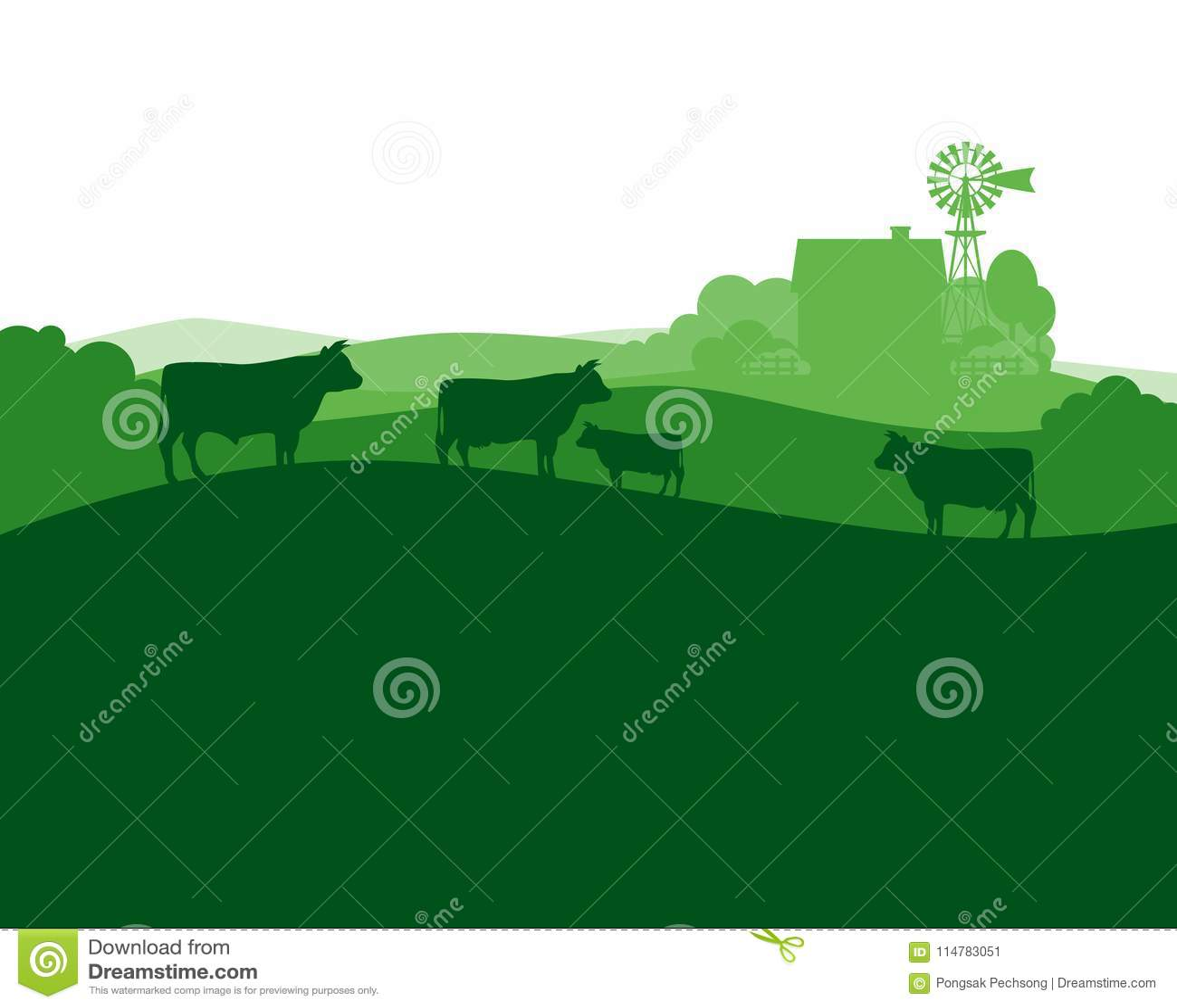 Paisaje rural con las vacas de la granja y de la manada de la leche