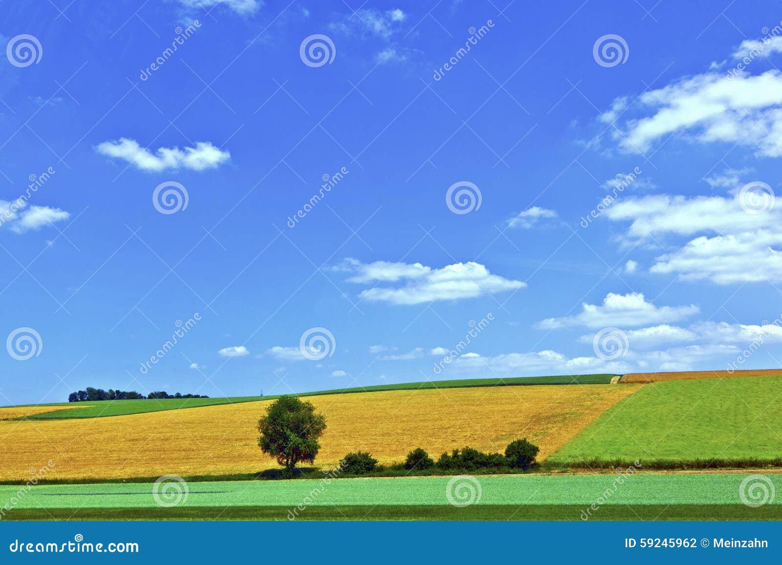 Download Paisaje Rural Con Los Campos Foto de archivo - Imagen de alimento, agricultura: 59245962