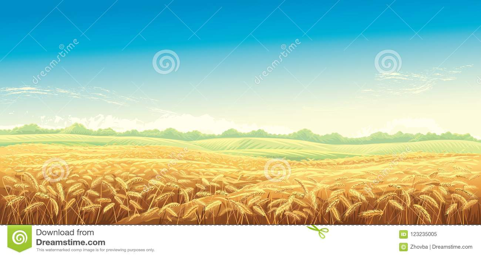 Paisaje rural con los campos de trigo