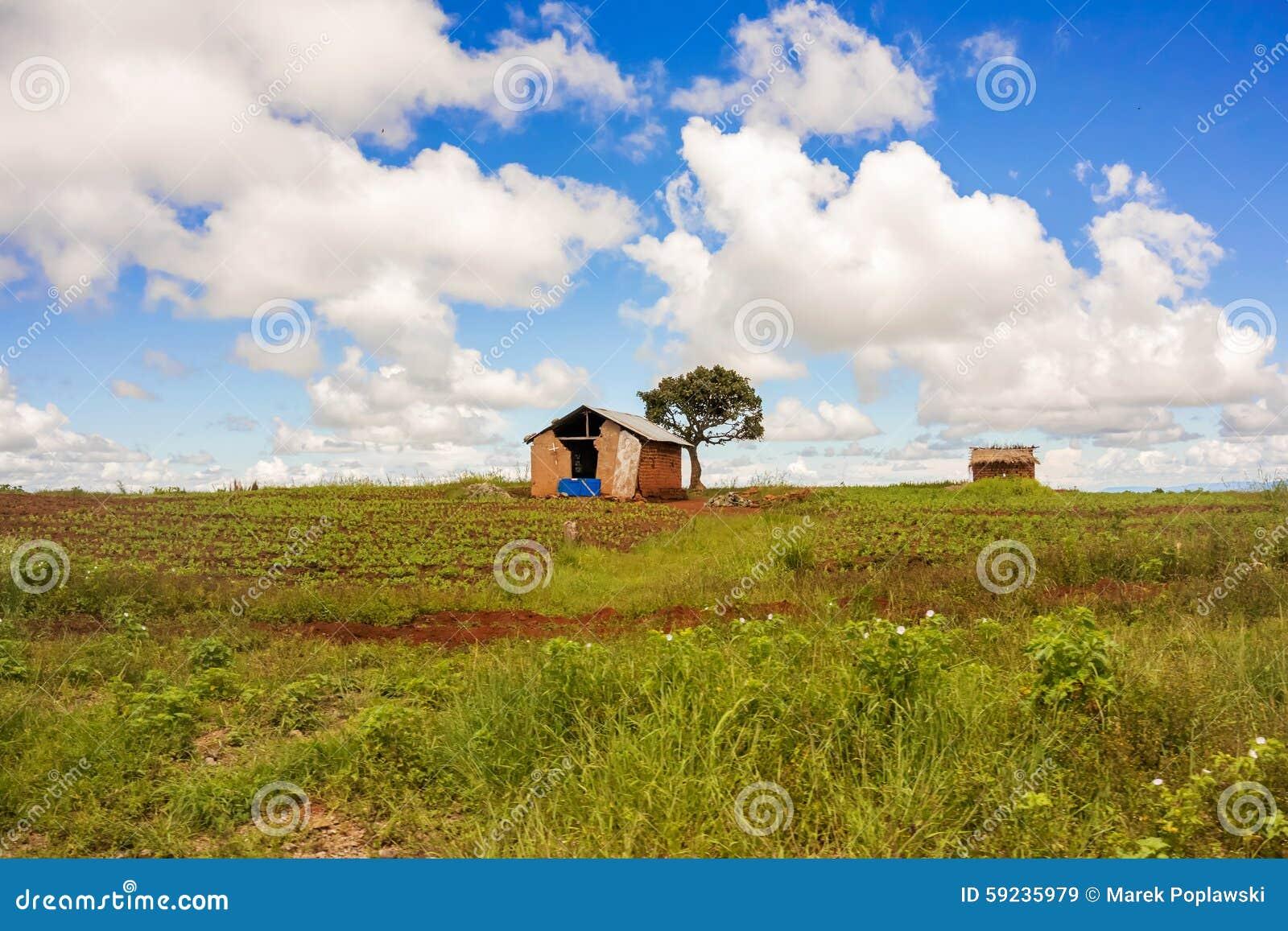 Paisaje rural en Tanzania