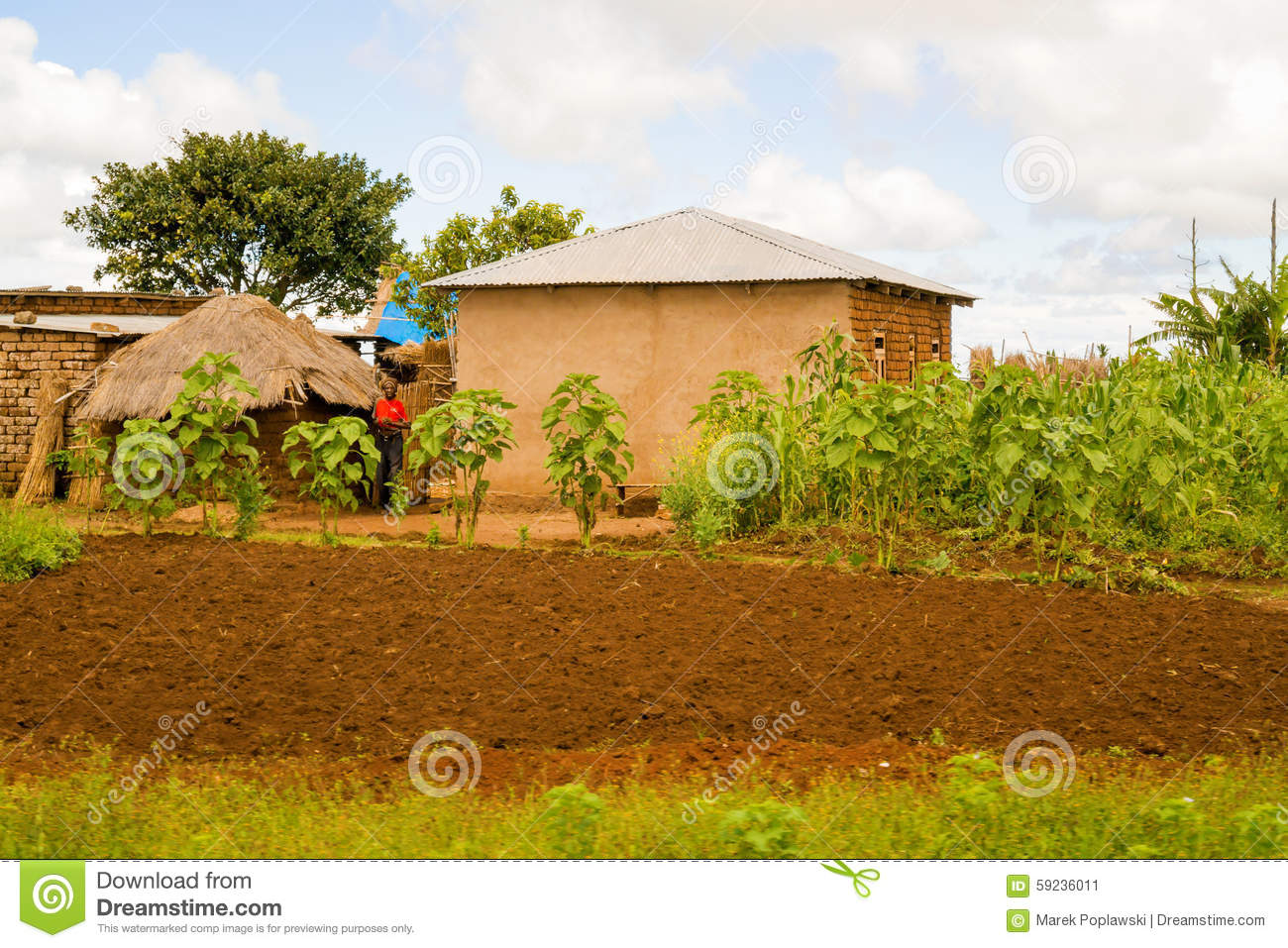 Download Paisaje rural en Tanzania foto editorial. Imagen de pintoresco - 59236011