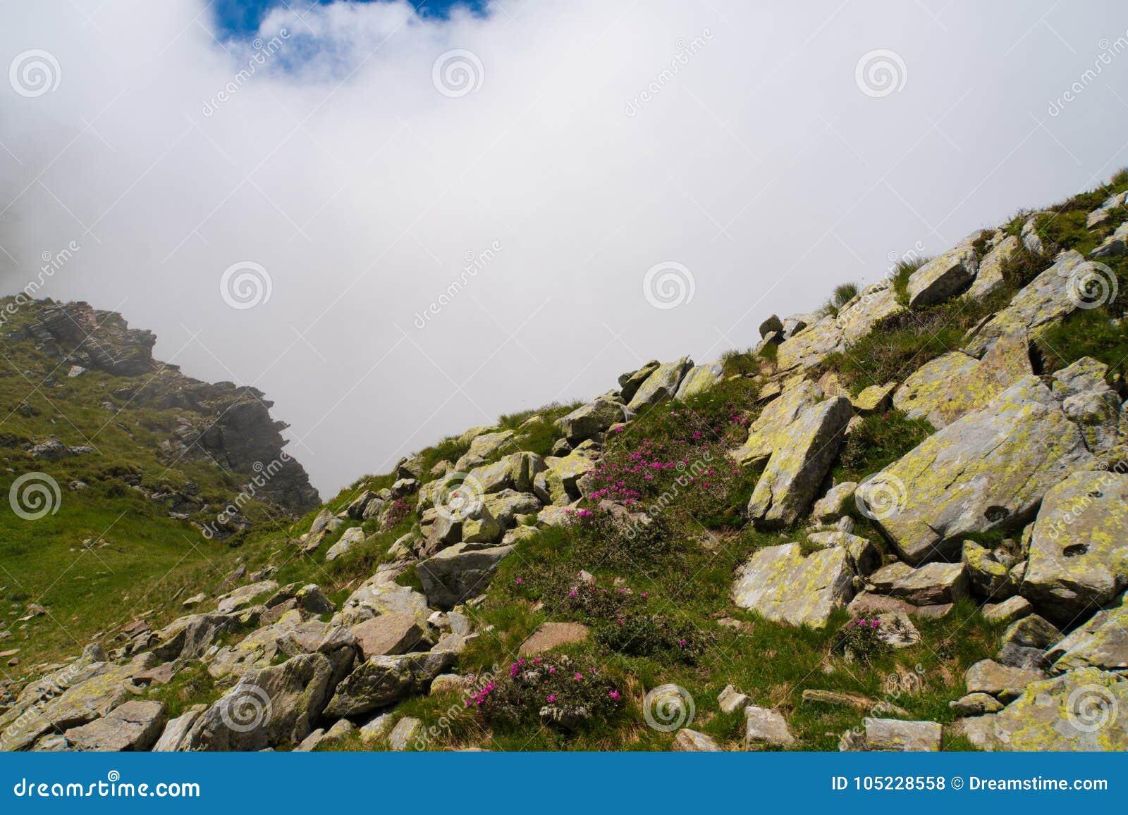 Paisaje salvaje hermoso con las montañas rocosas en la niebla de la mañana