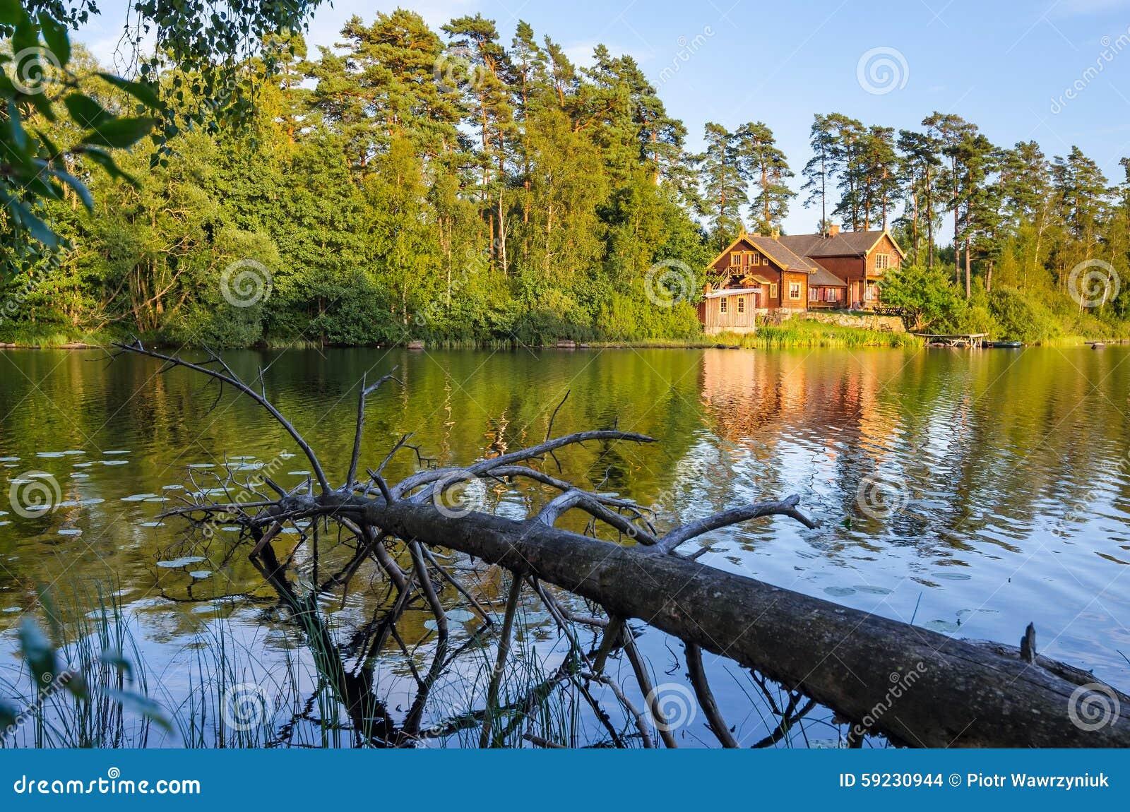 Paisaje sueco del lago
