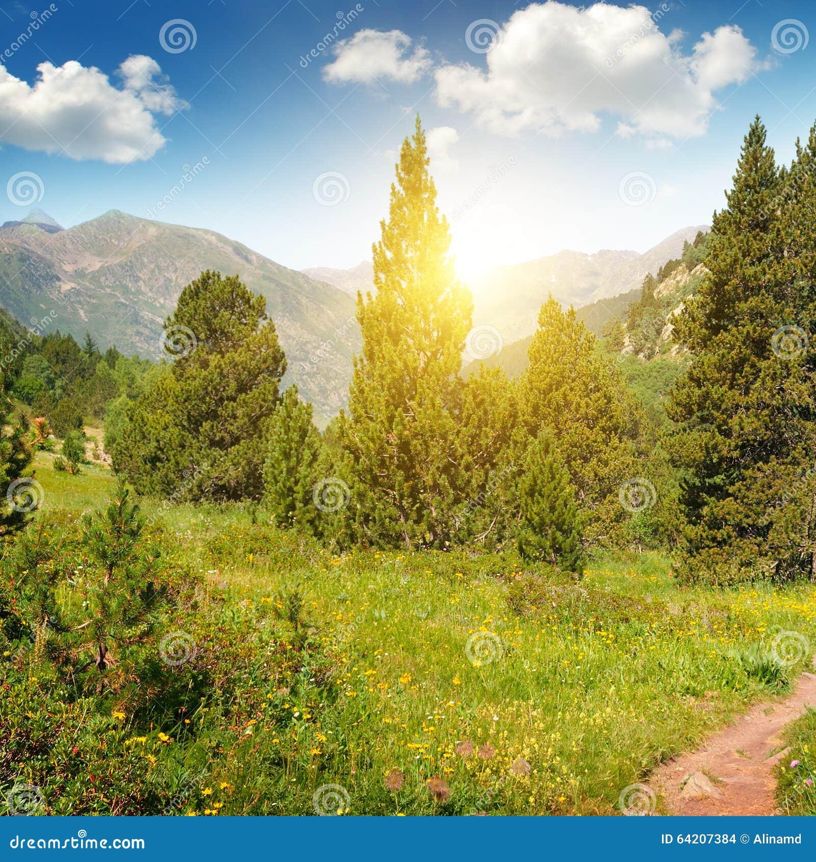 Paisaje y salida del sol de la montaña