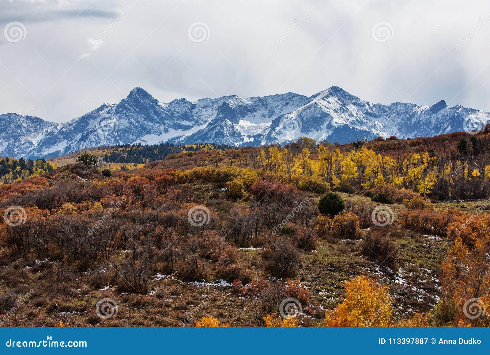 Paisajes Asombrosos Del Bosque Del Estado De San Juan En Colorado - Paisajes-asombrosos
