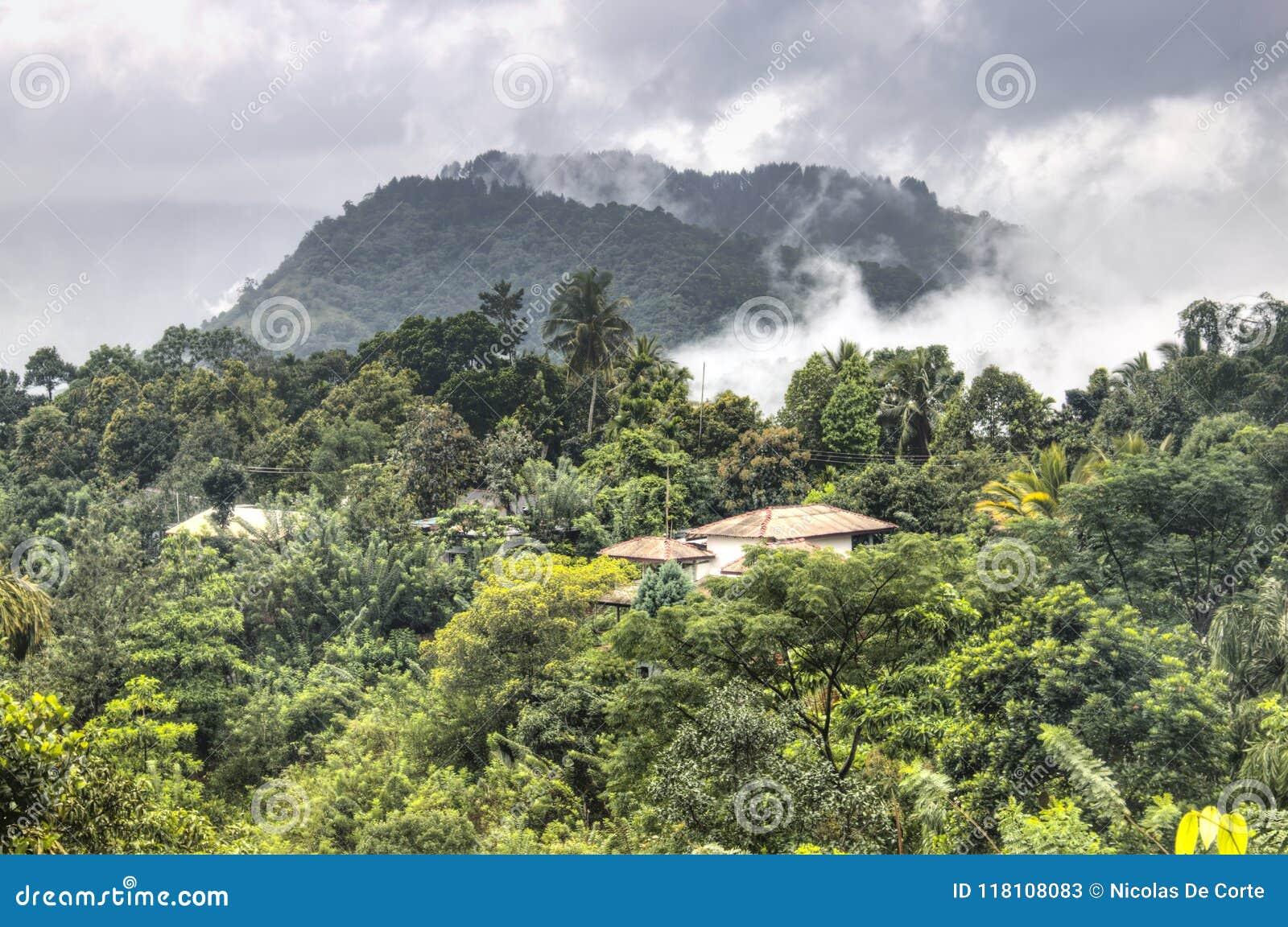 Paisajes Asombrosos En Kandy Sri Lanka Imagen De Archivo Imagen - Paisajes-asombrosos