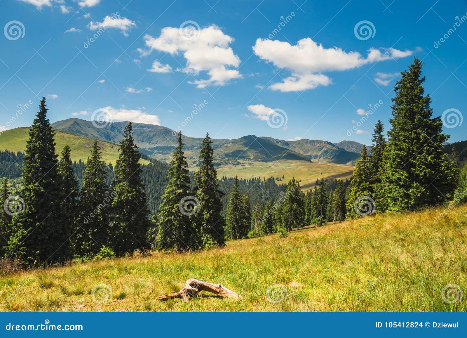 Paisajes de las montañas de Rodna en Cárpatos del este, Rumania