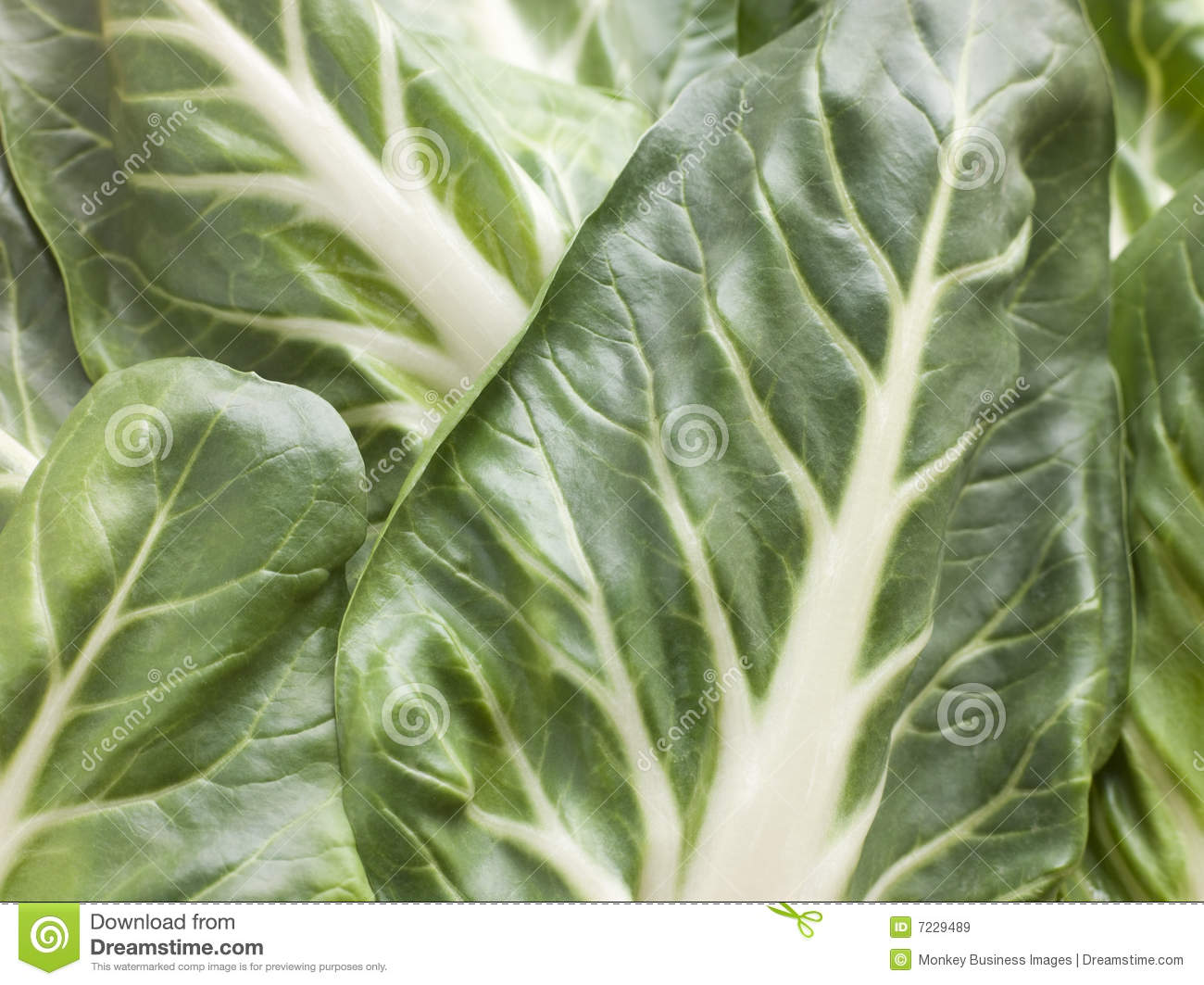 how to cook bok choy cabbage