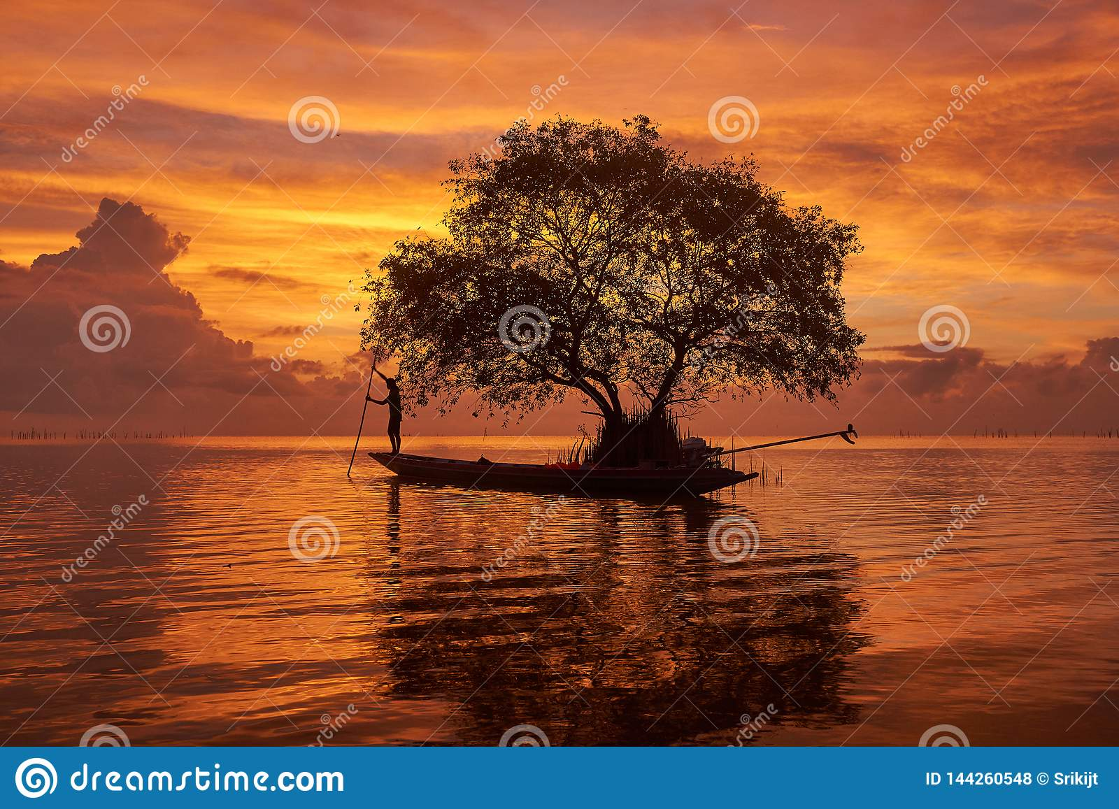 A fisherman on longtail boat and a cork tree agianst beautiful sky background