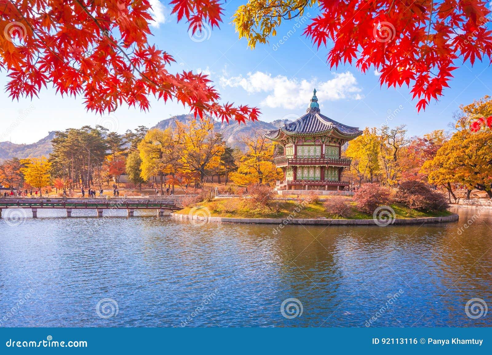 Palácio com folhas de bordo, Seoul de Gyeongbokgung, Coreia do Sul