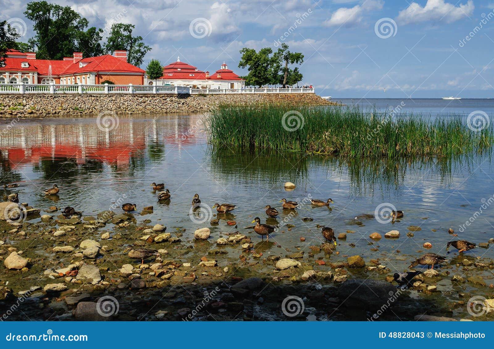 Palácio de Monplaisir em Peterhof