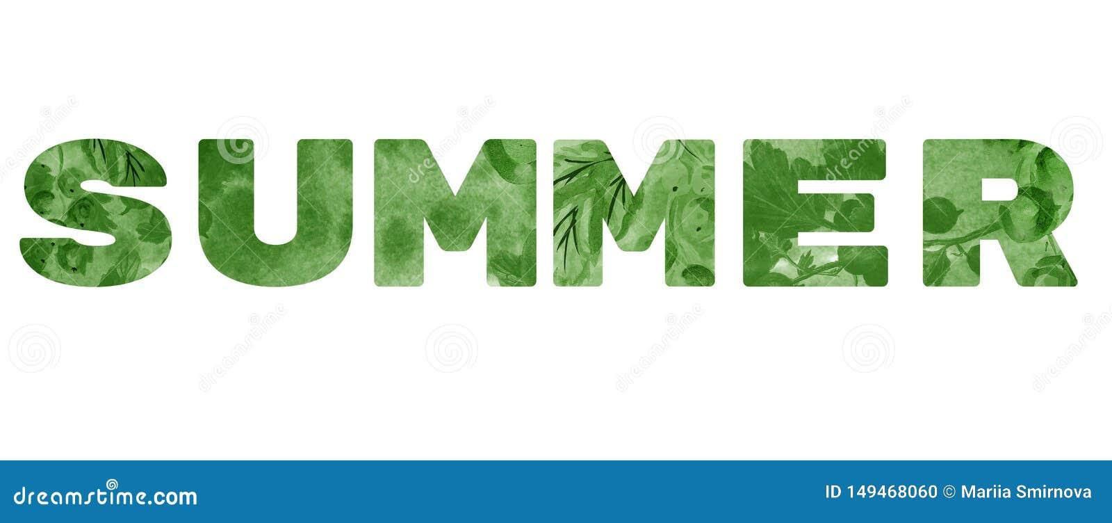 A palavra 'verão ' Inscrição verde no fundo branco
