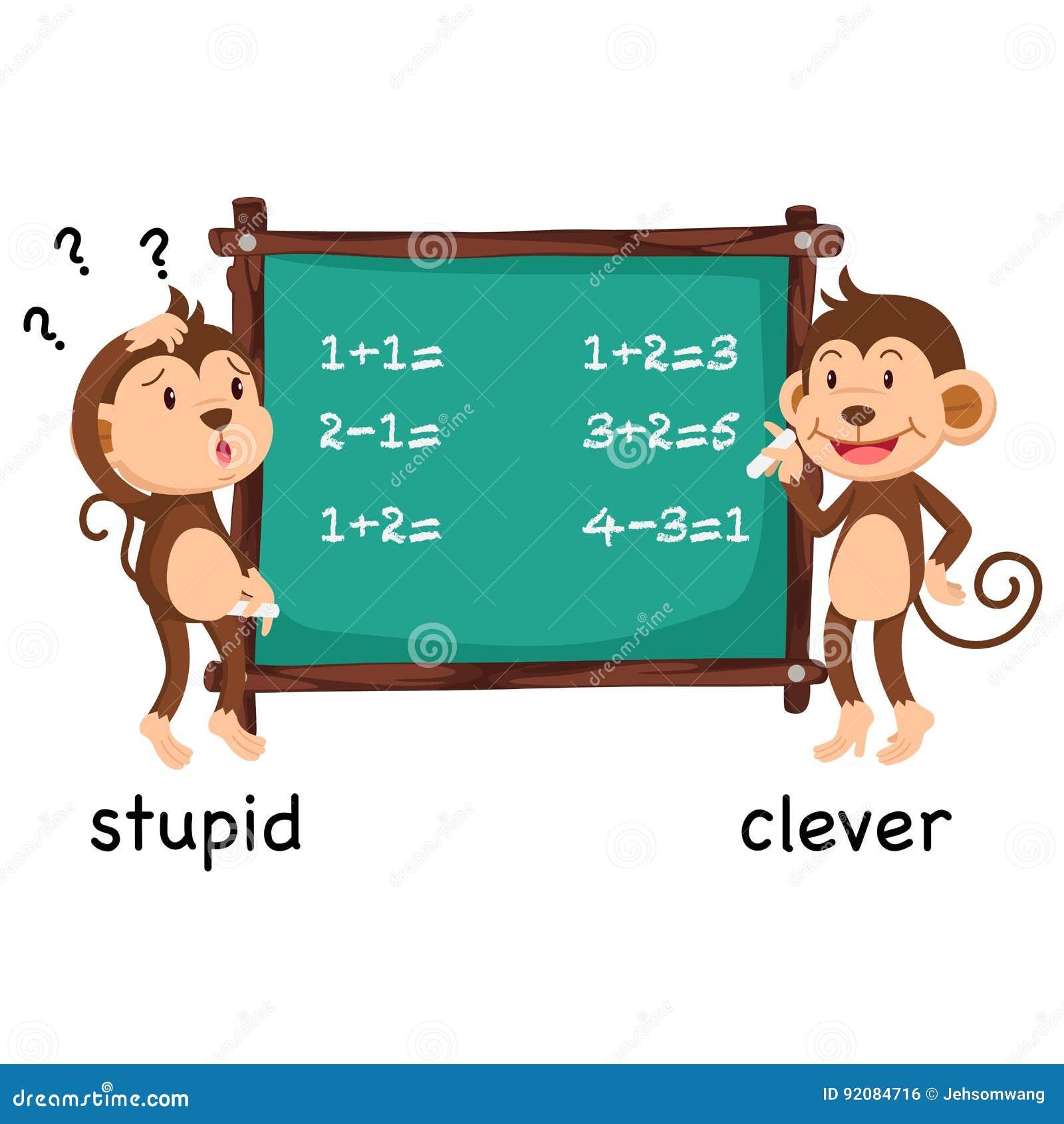 Palavras opostas estúpidas e vetor inteligente