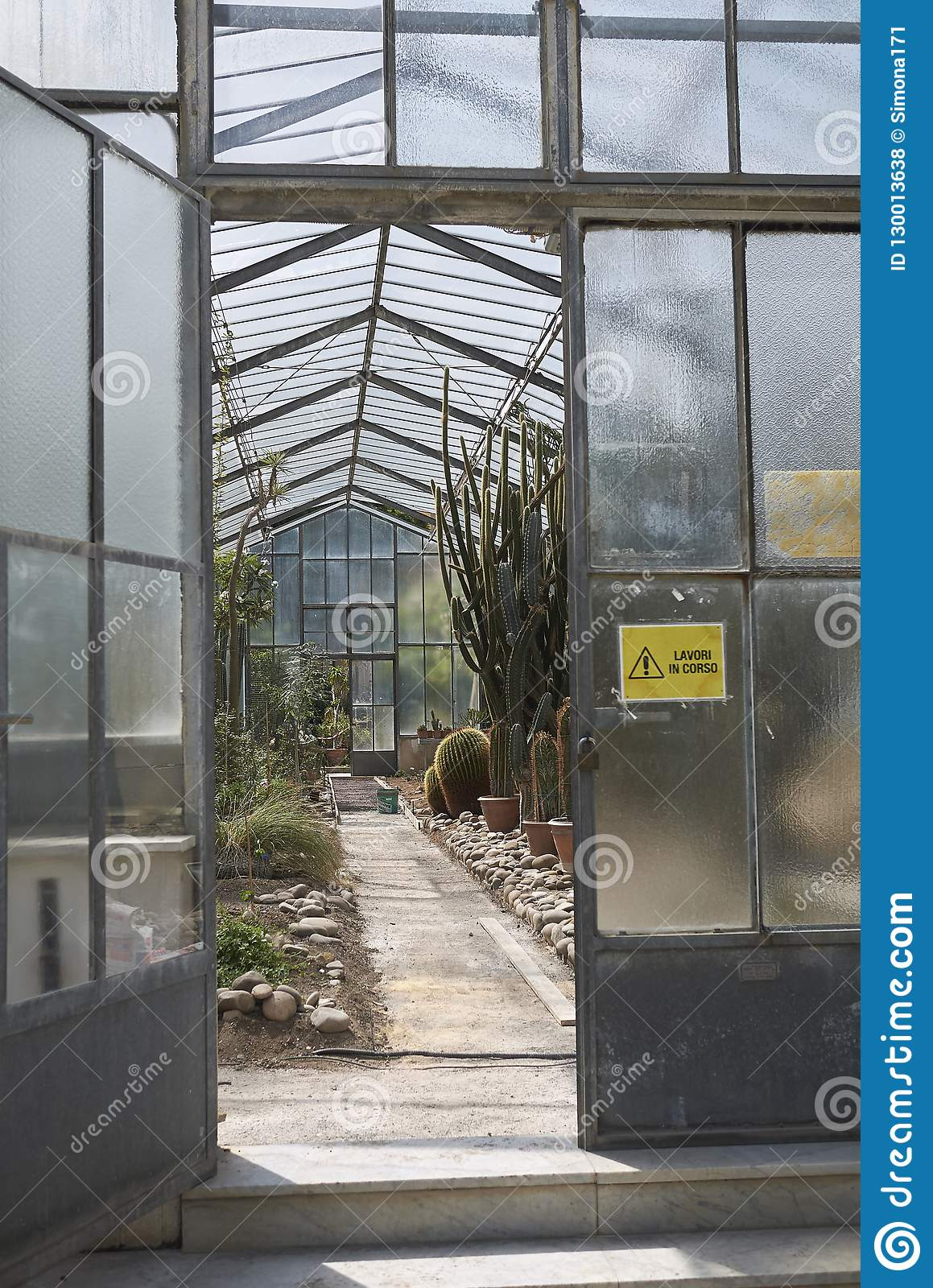 Succulents glass house editorial stock photo. Image of garden ...