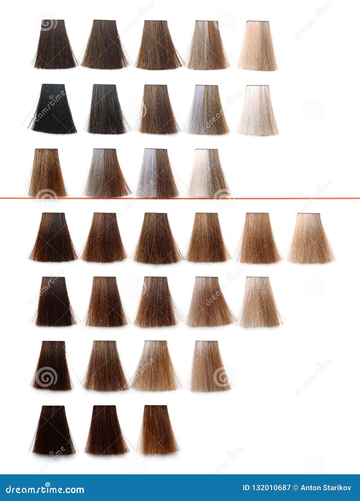 Paleta de la muestra del tinte de pelo
