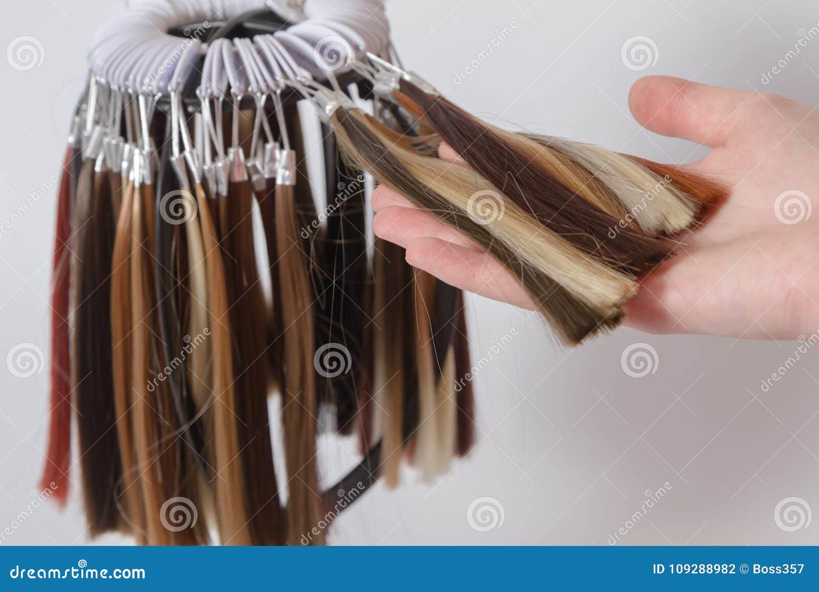 Paleta próbki barwiony włosy różnorodni cienie