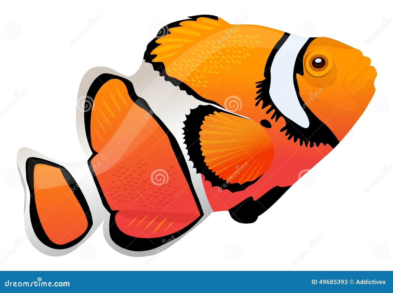 Palhaço Fish
