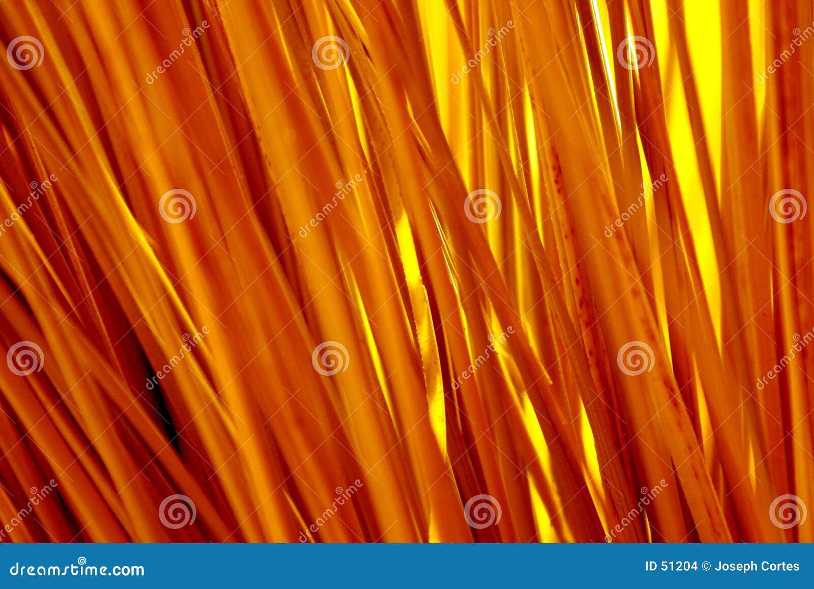 Palhas brilhantes do amarelo da cor