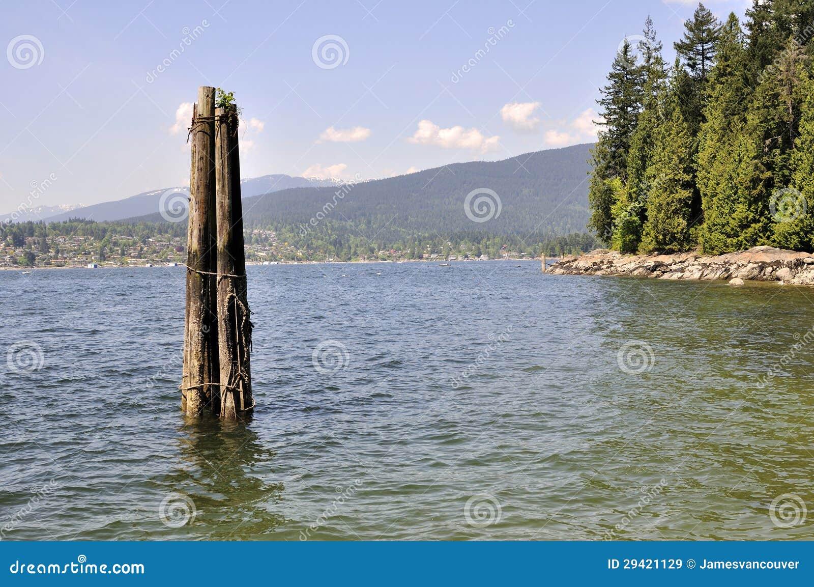 Pali di legno in acqua di mare immagine stock immagine di mare