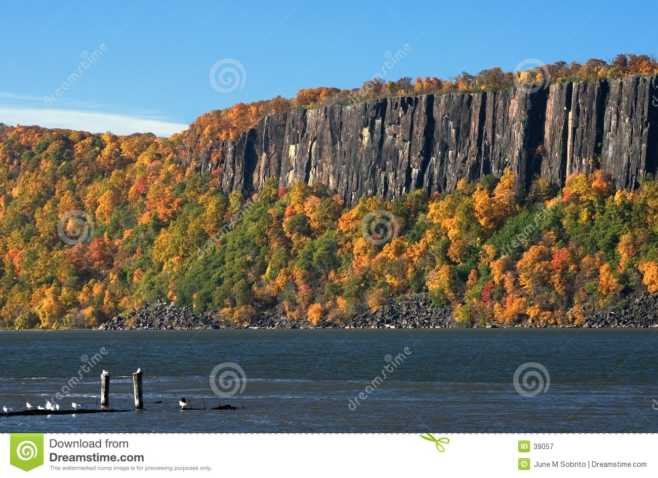 Download The Palisades stock image. Image of trees, river, hudson - 39057