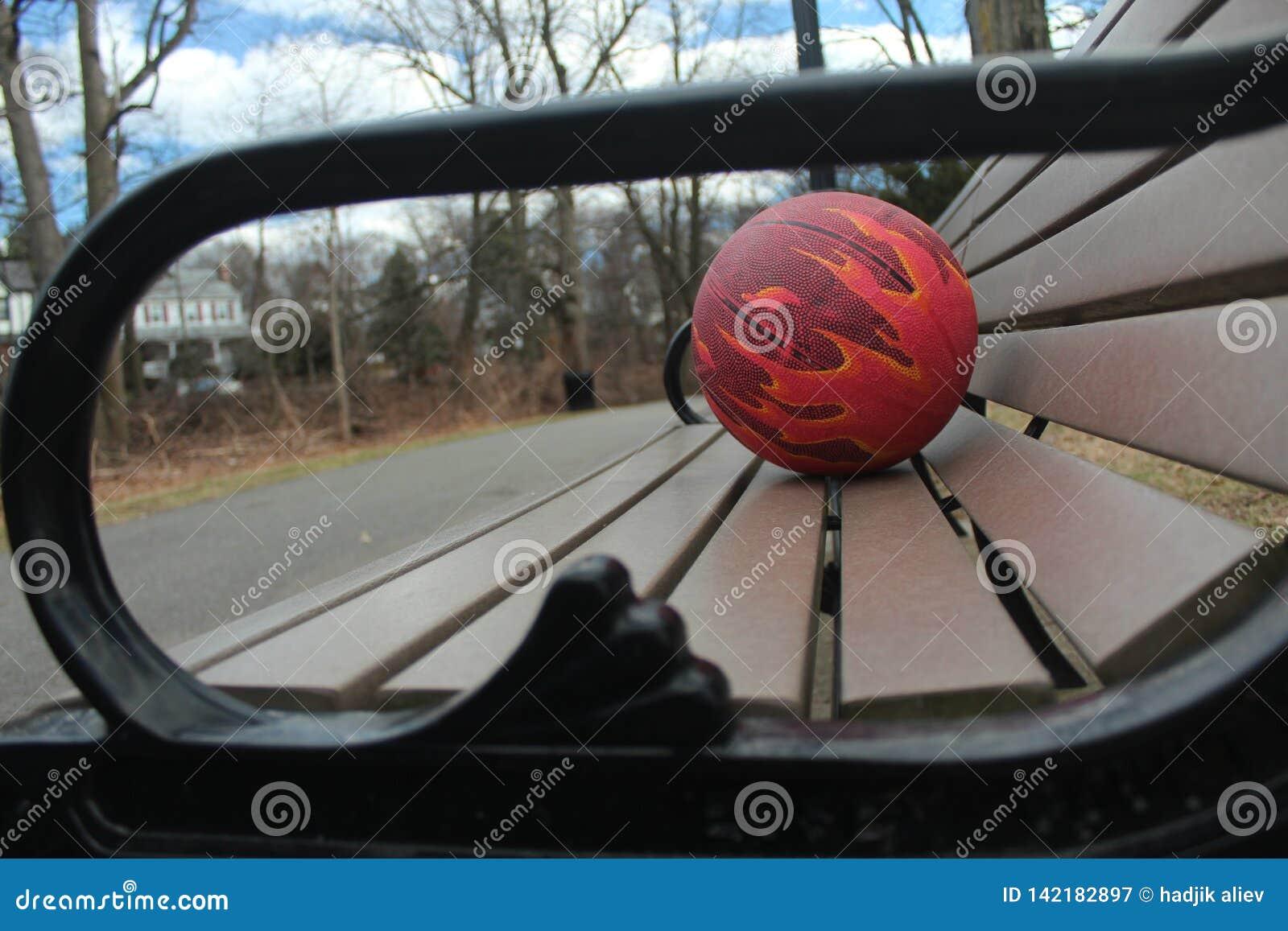 Palla per pallacanestro su un banco di parco