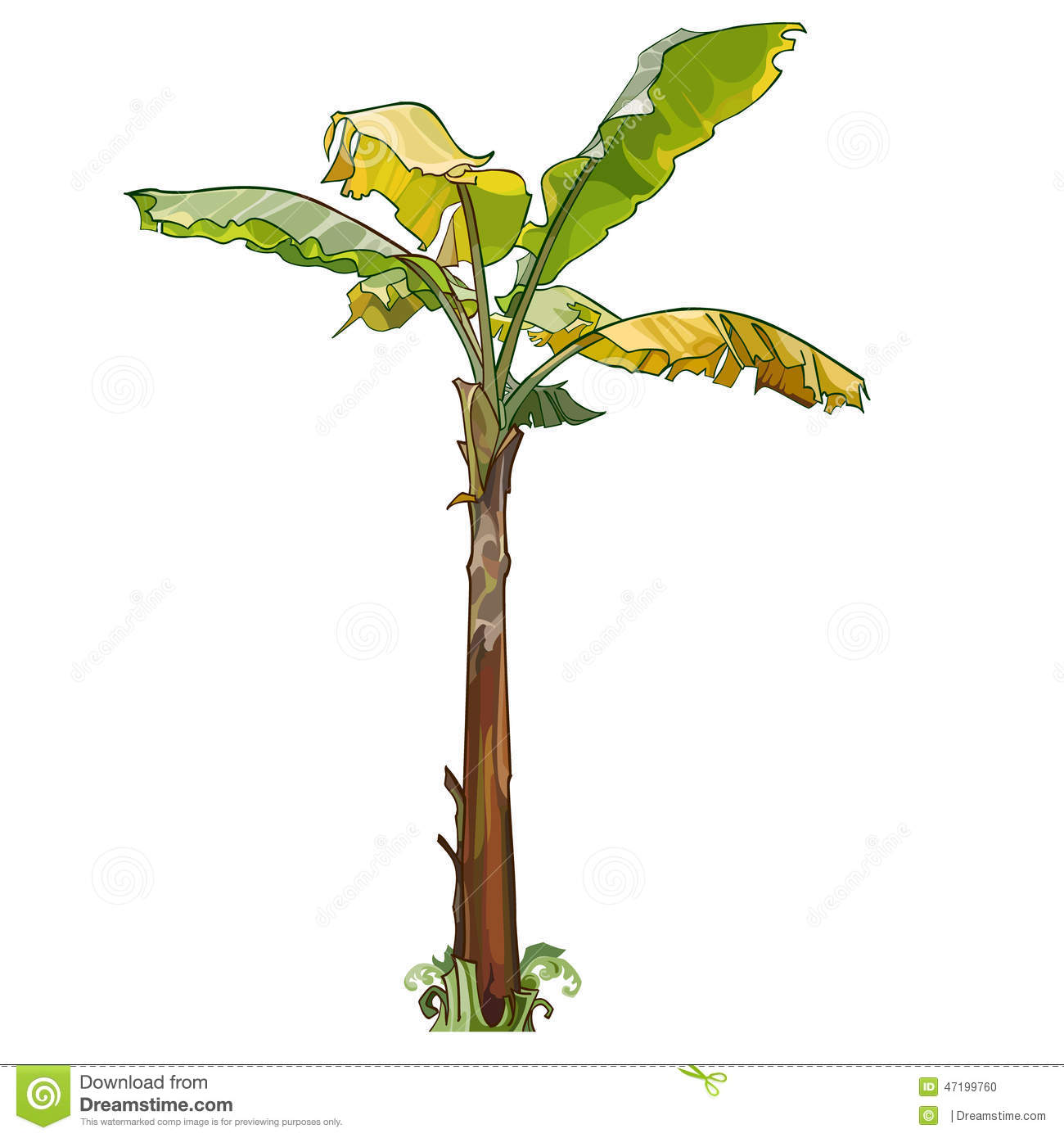 Palm Banana Tree With Yellow Leaves Stock Vector ...