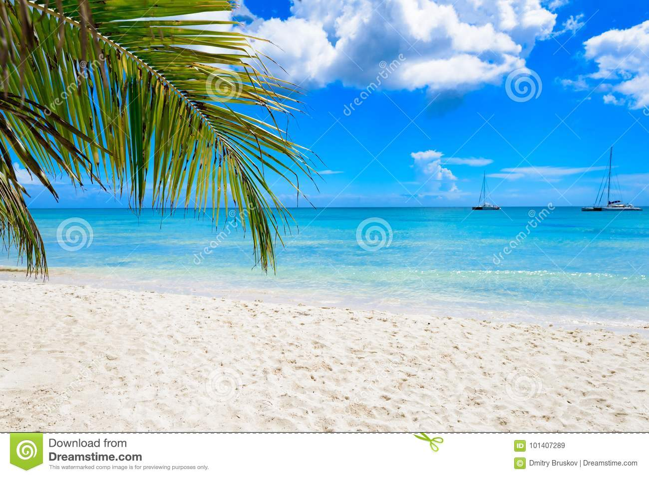 Palm beach chaise longue stock photo image 101407289 for Beach chaise longue