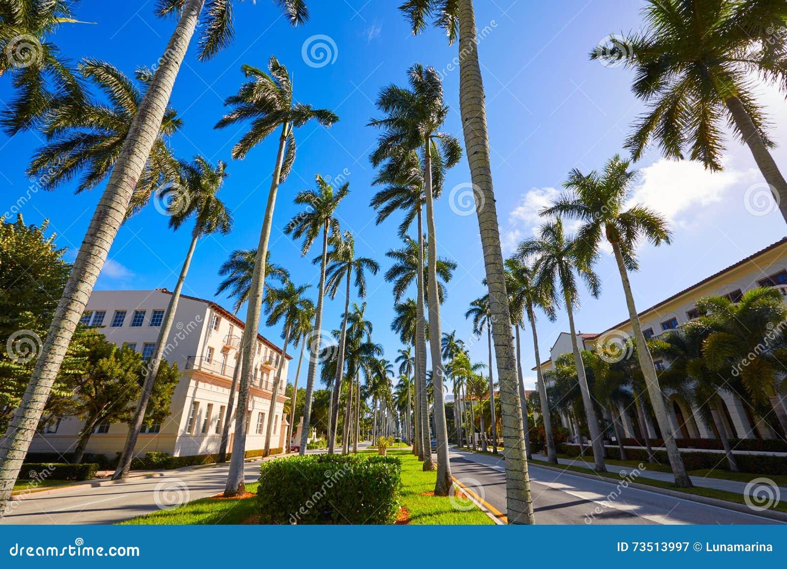 Dating royal palm beach