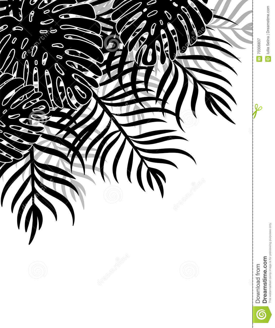 Silhouette tropical leaves on a white background natural tropical background