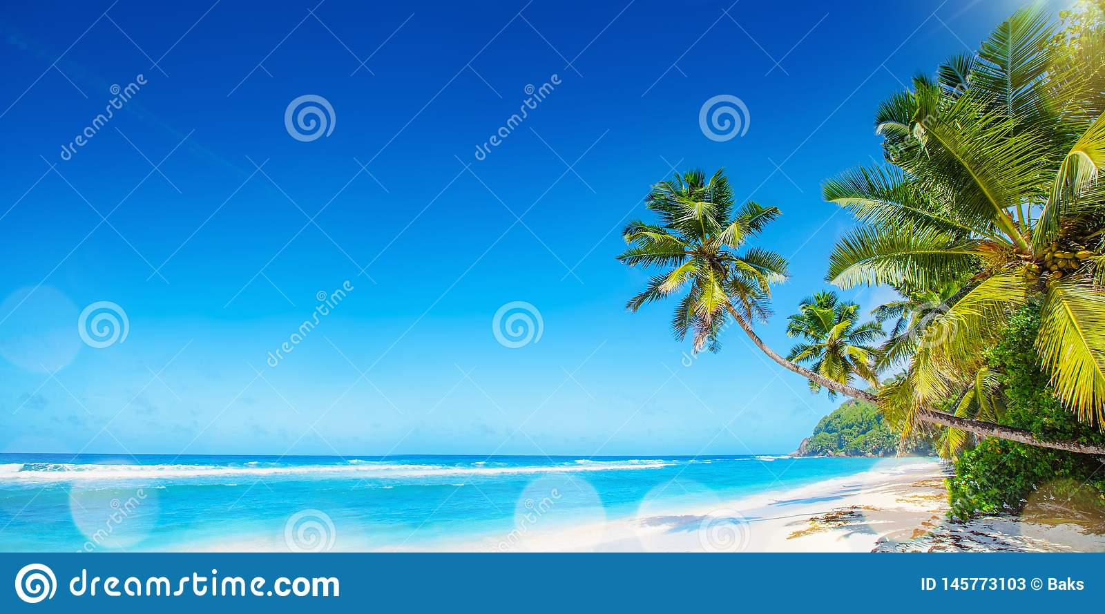 Palm Beach in Tropisch Paradijs