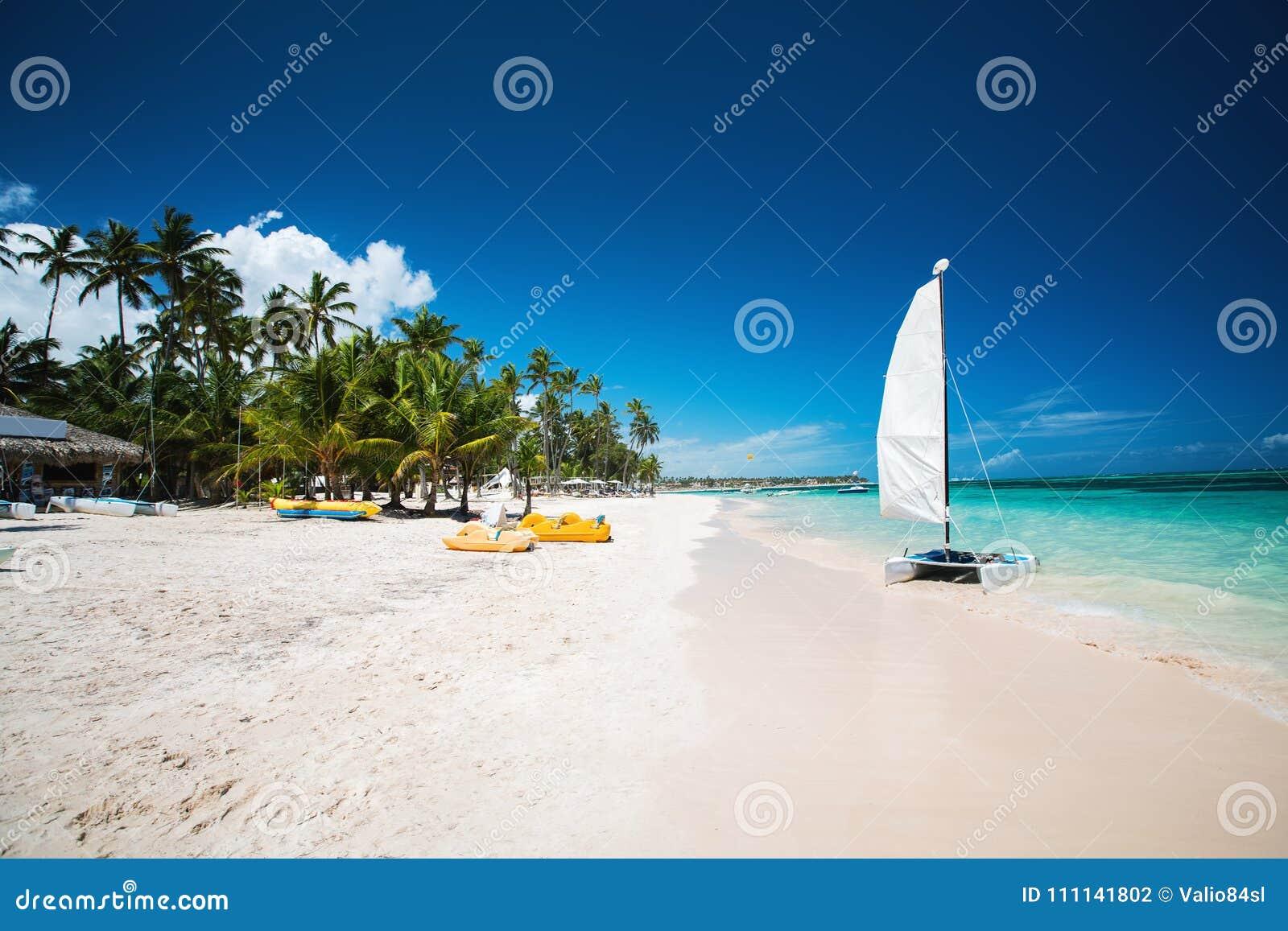 Palm en tropisch strand in Punta Cana, Dominicaanse Republiek