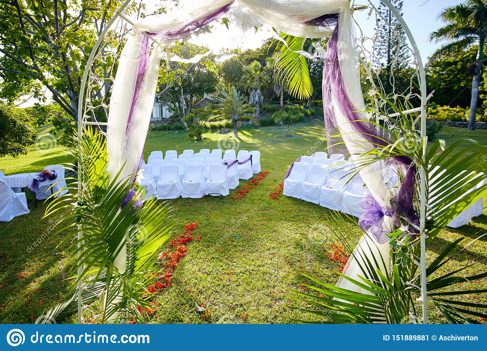 Palm-fringed Wedding Arch in Lush Tropical Garden with Flamboyant Trees