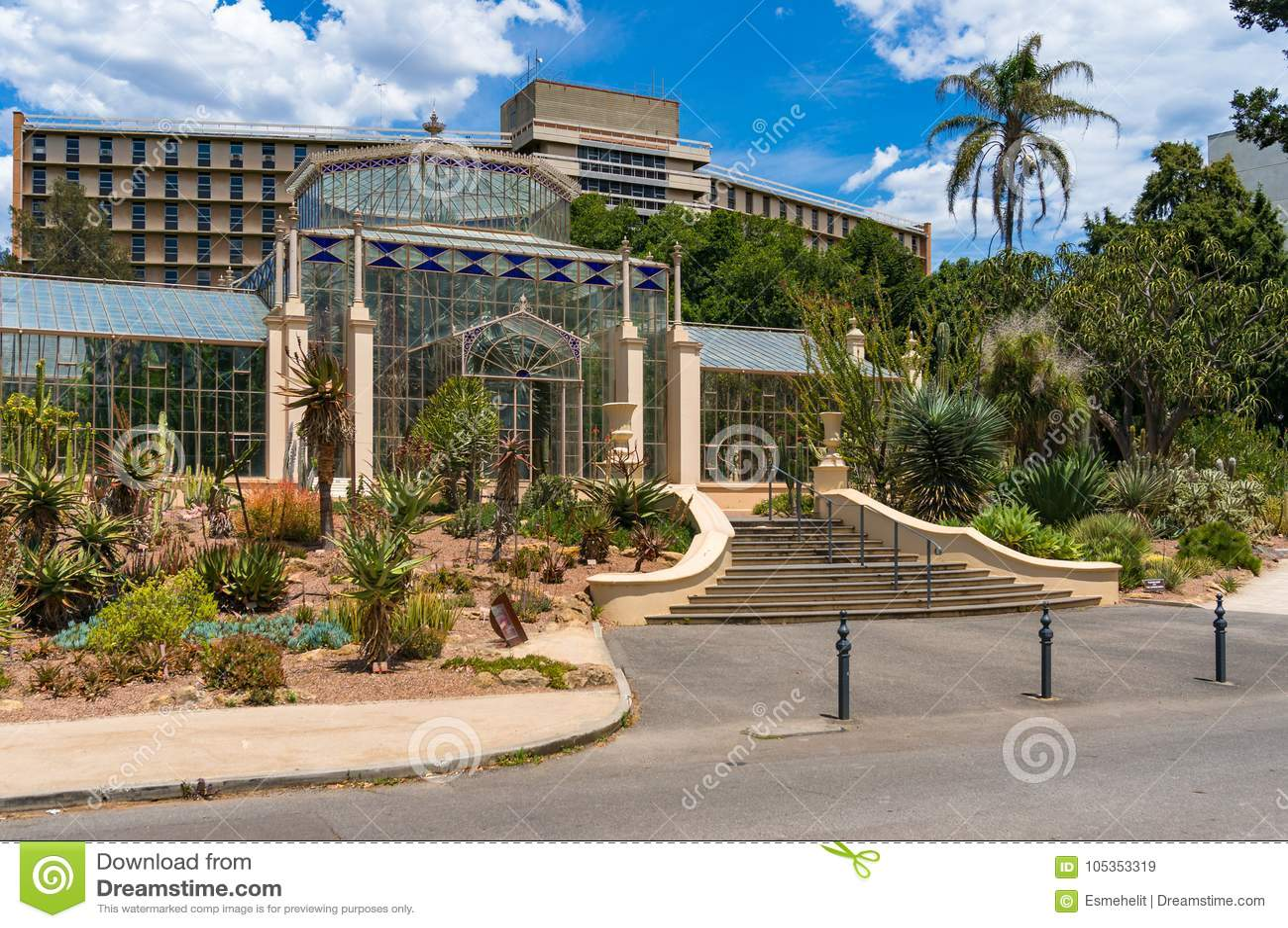 Palm House In Adelaide Botanic Garden Editorial Stock Image - Image ...