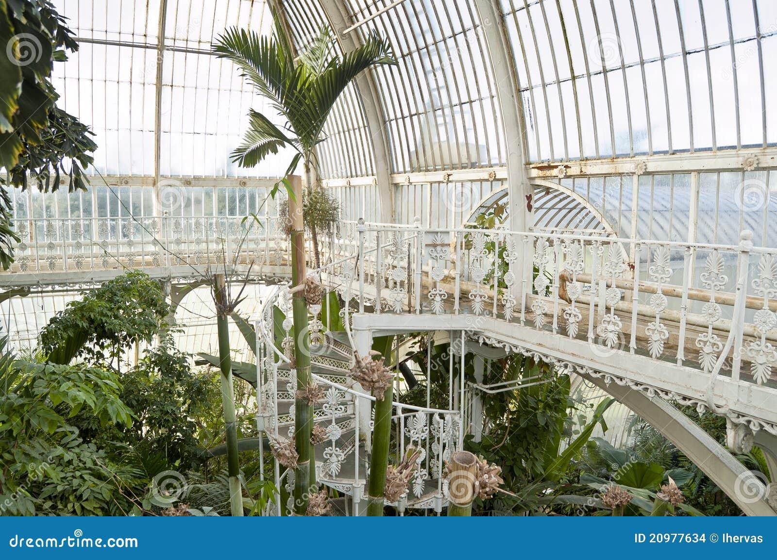 palm-house-kew-gardens-london-20977634 Palm Garden House Plan on conservatory plans, tree plans, greenhouse plans, cathedral plans, pagoda plans, park plans, garden plans, pond plans, pavilion plans, wardian case plans,