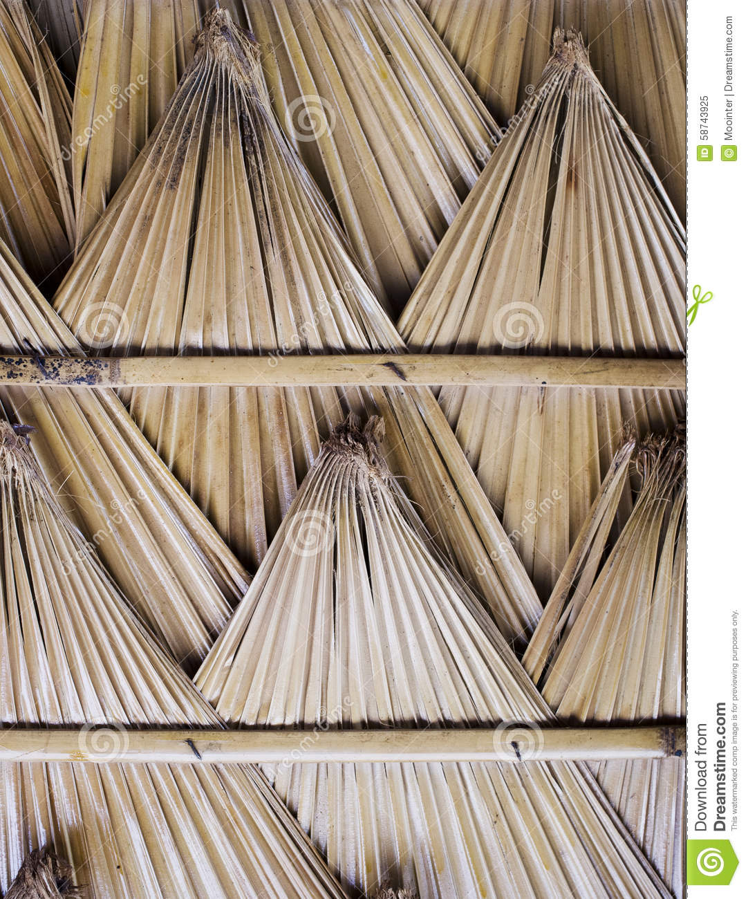 Palm Leaf Roof Stock Photo Image 58743925