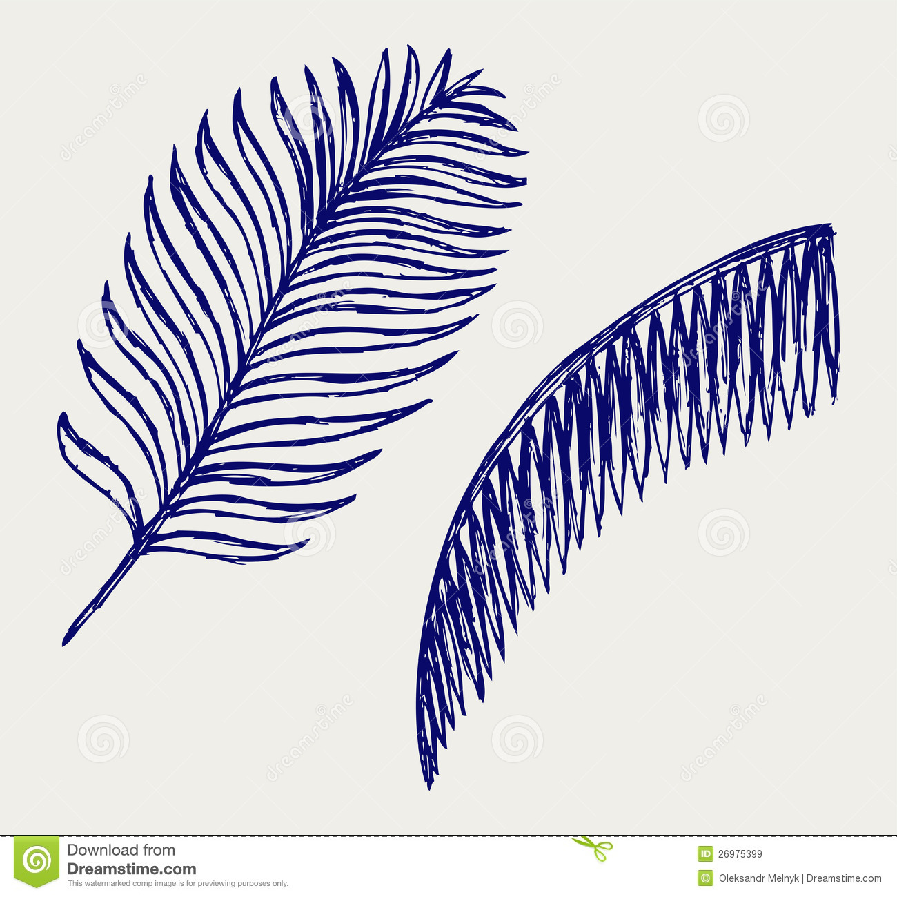 Palm Leaves Royalty Free Stock Images Image 26975399