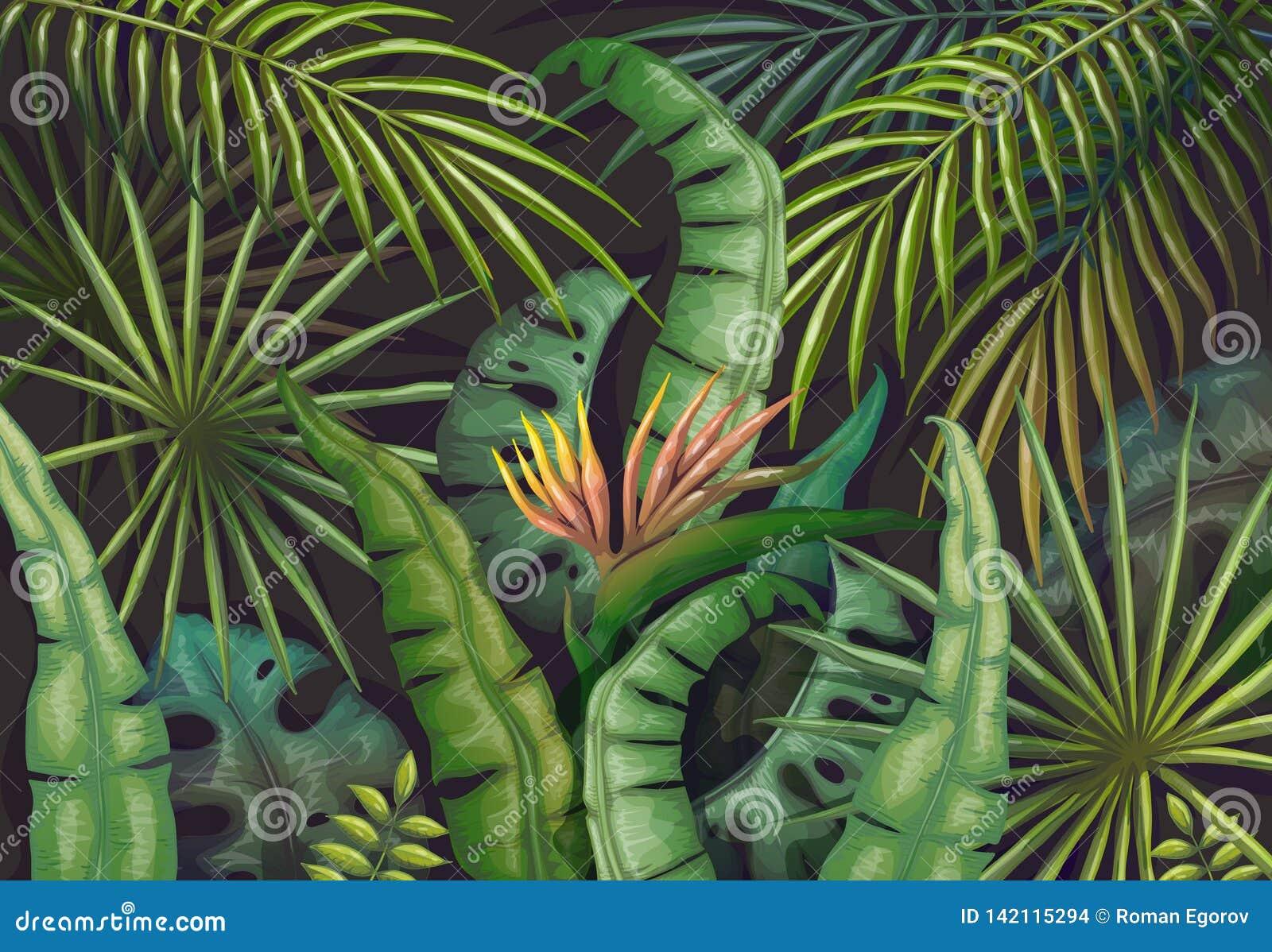 Palm Leaves Background Tropical Summer Jungle Exotic Plant Flyer Green Exotic Forest Poster Vector Vintage Jungle Stock Vector Illustration Of Leaf Nature 142115294