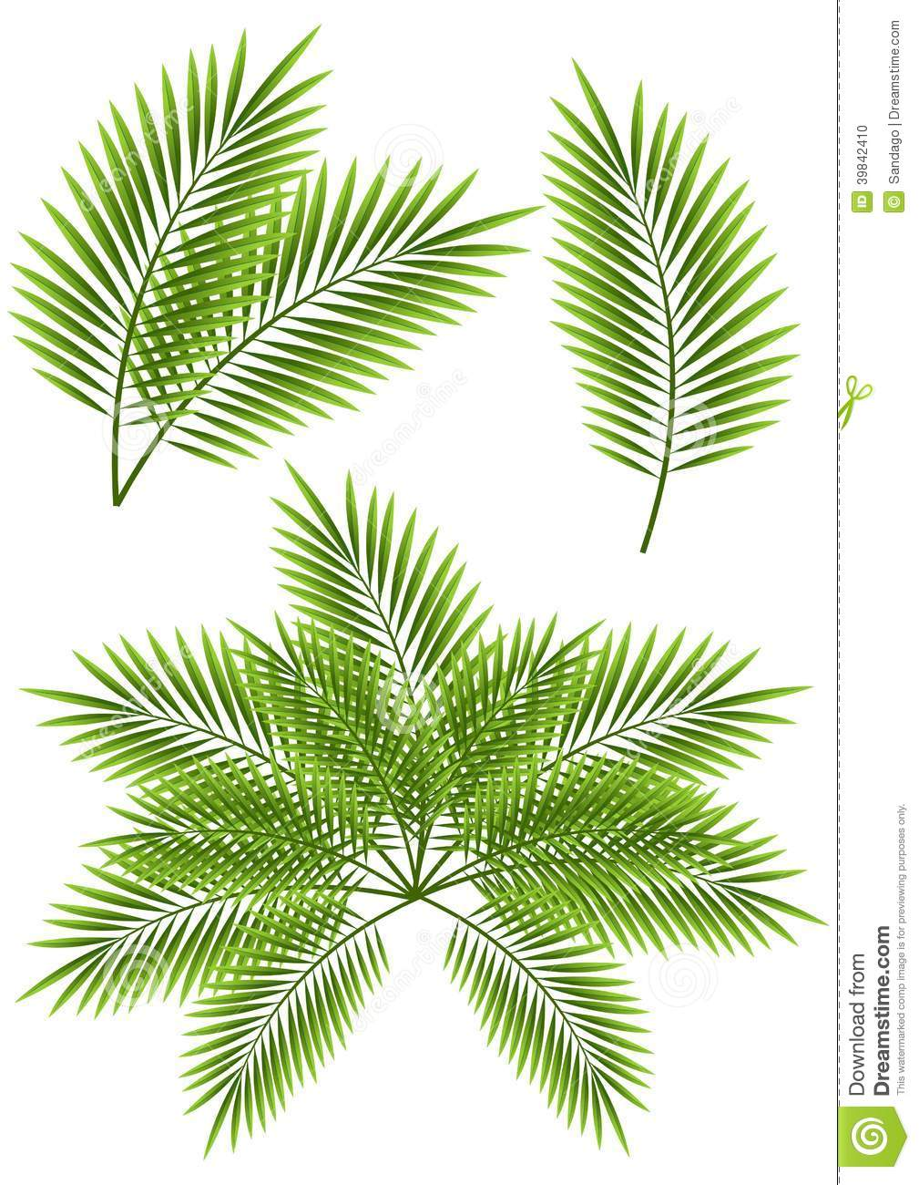 Banana leaf chair - Vector Illustration Of Palm Leaves Isolated